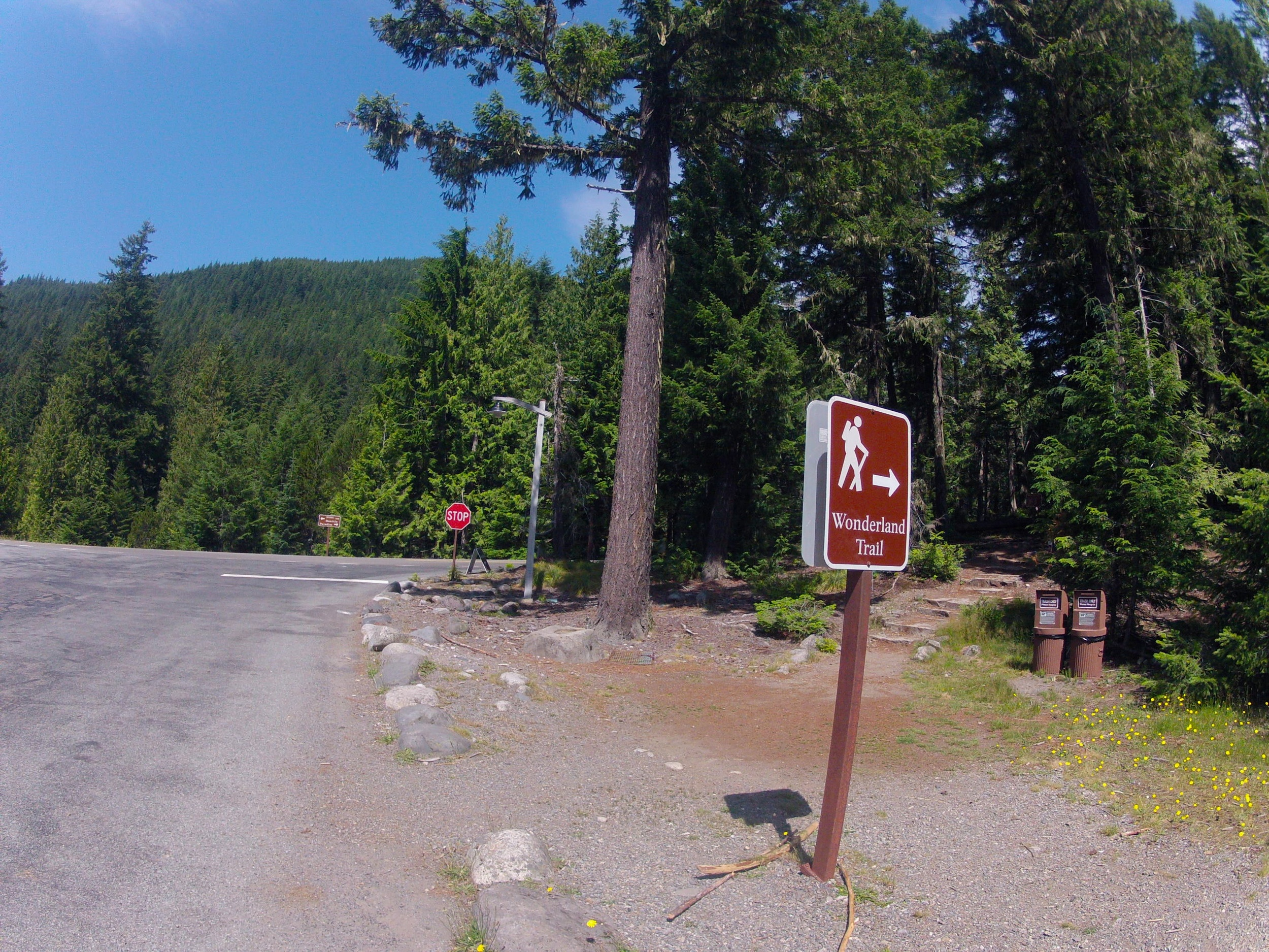 trail beginnings at Longmire