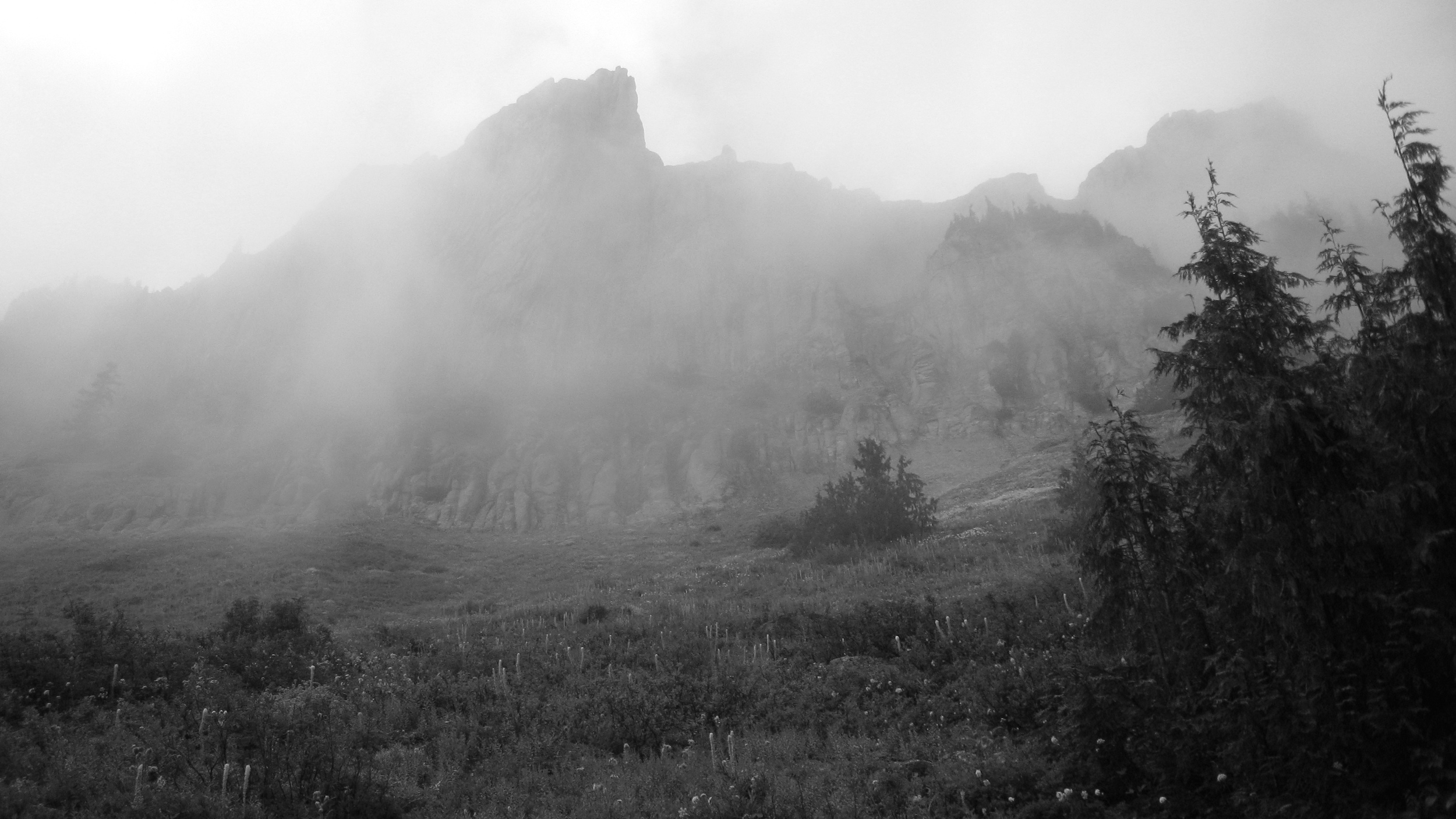 Yellowstone Cliffs in the mist