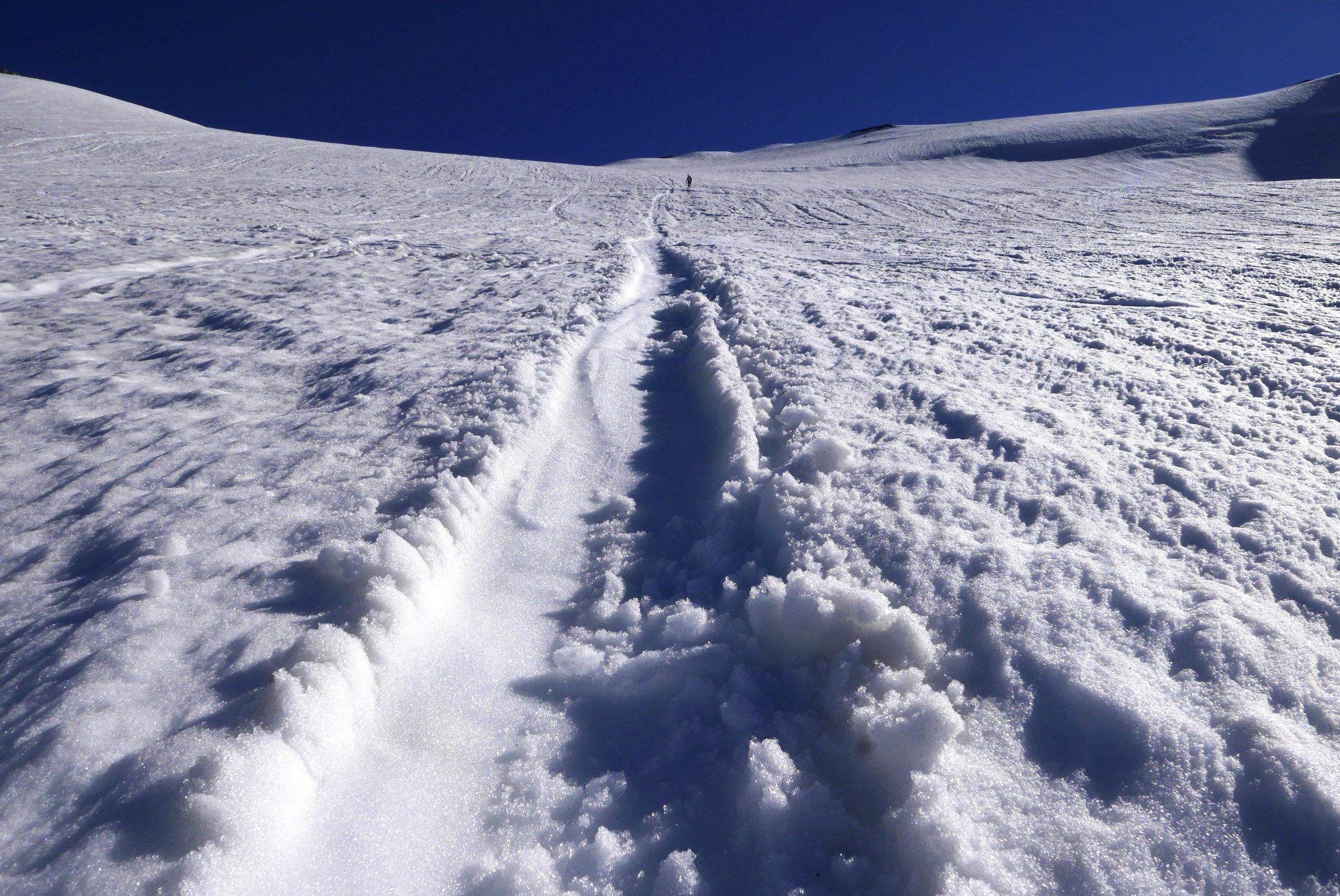 fresh glissade track on the Inter glacier