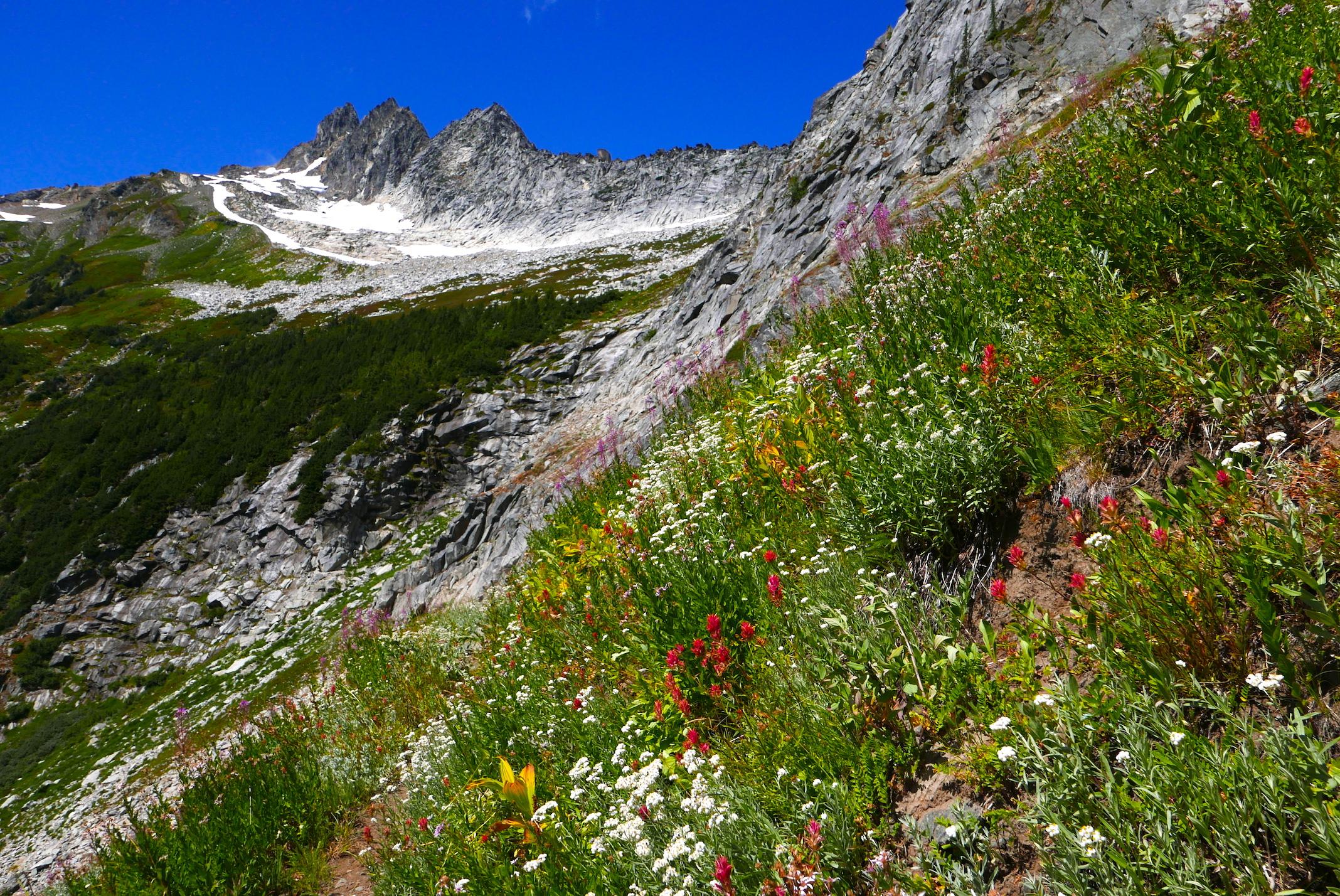 the climb to Boulder Pass