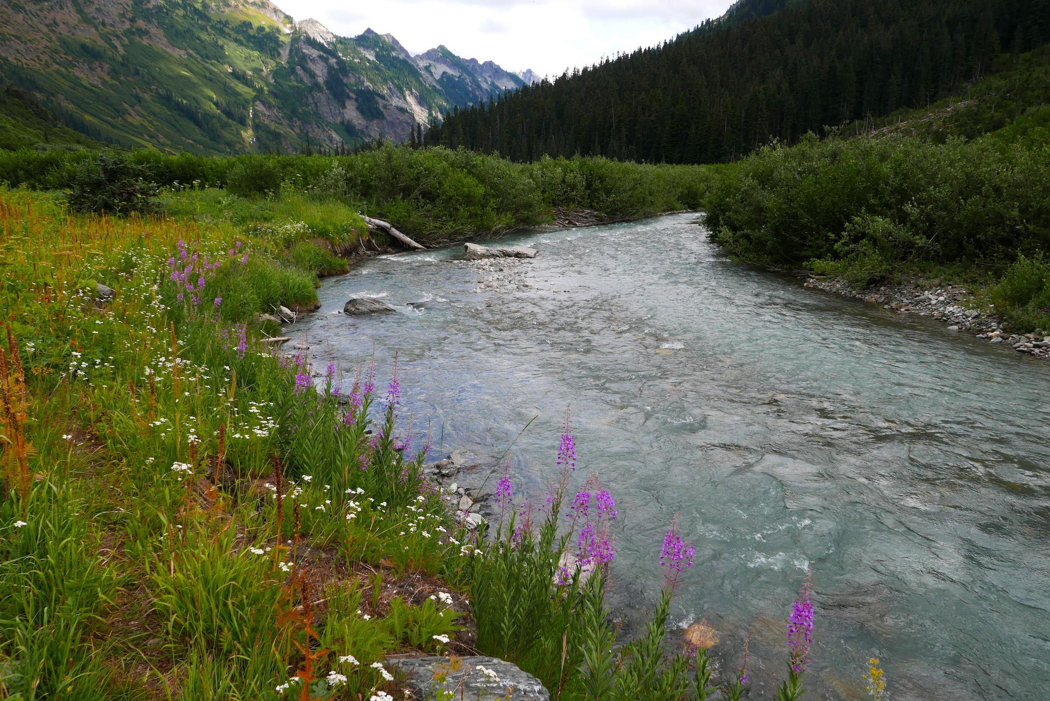 the verdant Napeequa Valley