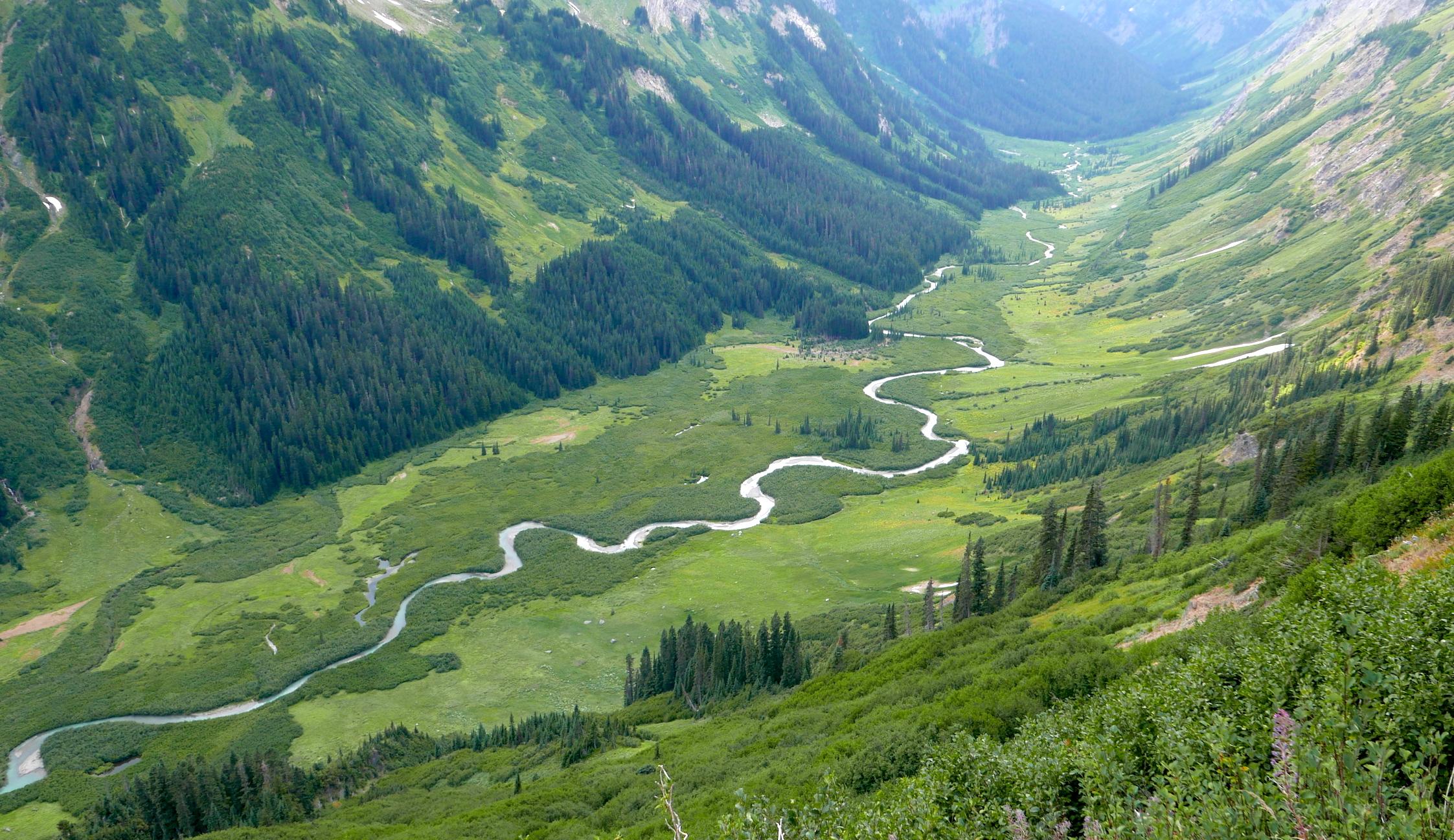 The verdant Napeequa Valley on the climb to Little Giant Pass, Glacier Peak