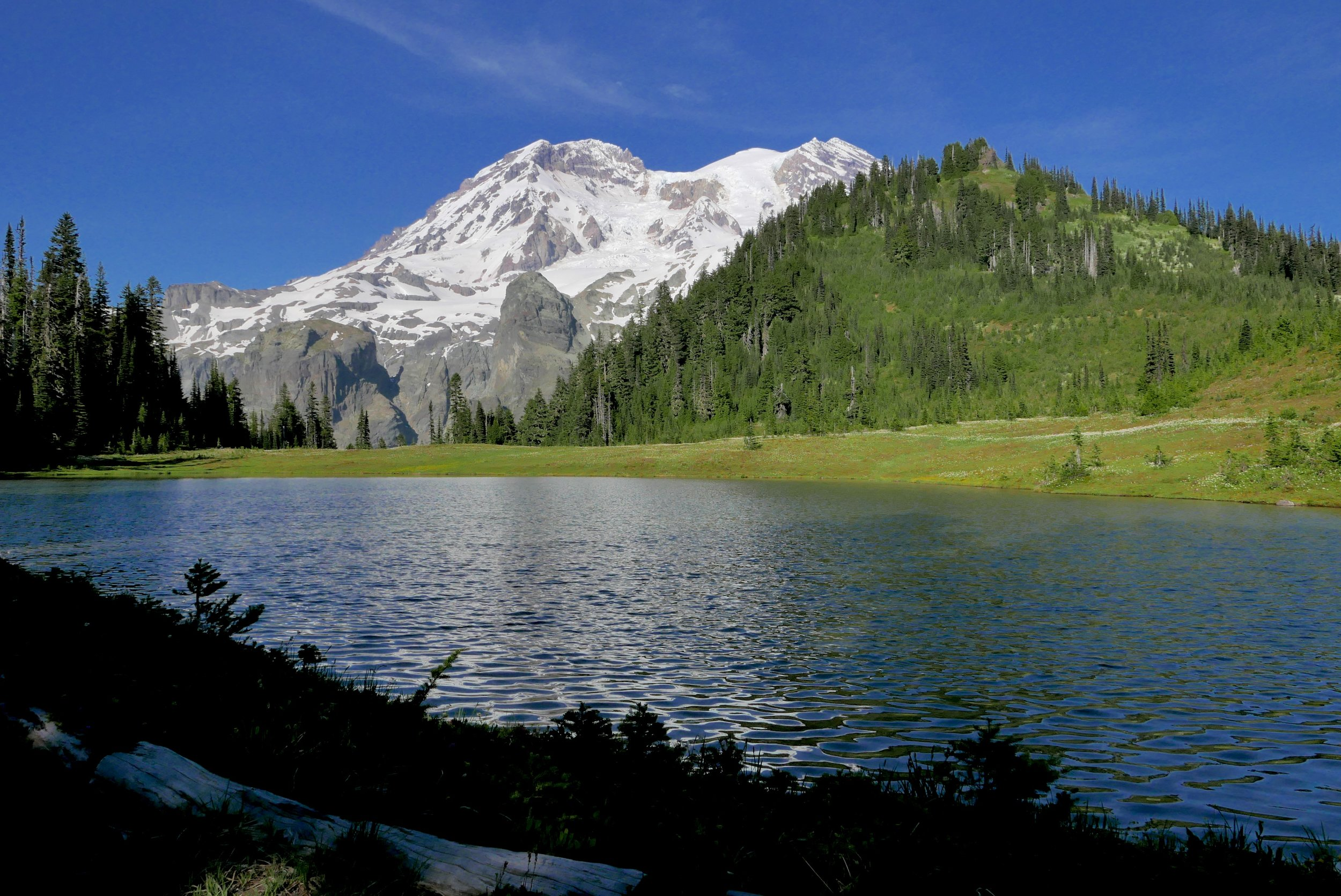 Klapatche Park (5500') and Aurora Lake  (June 9, 2015)