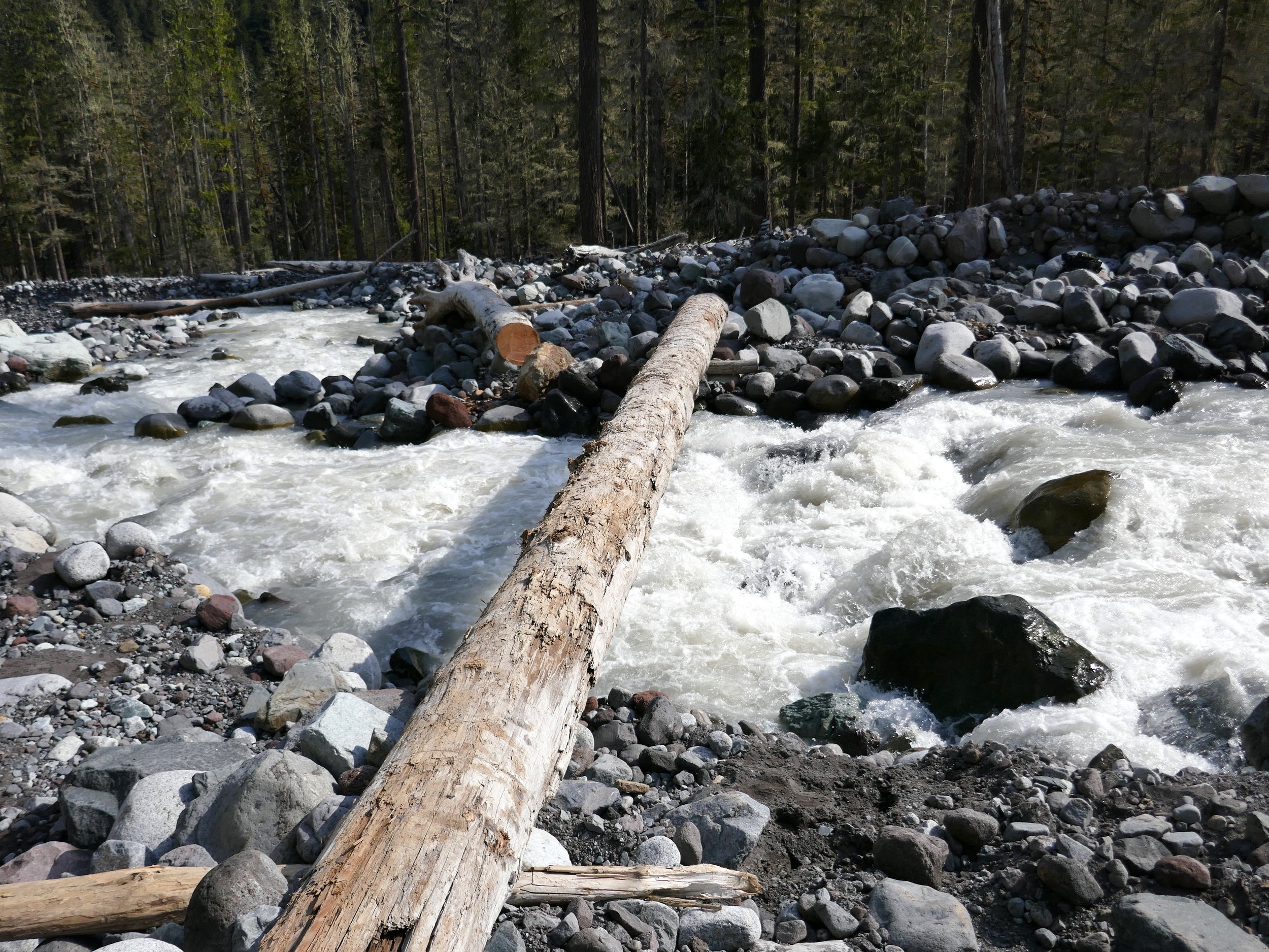 Log bridge over the Lower Carbon River crossing