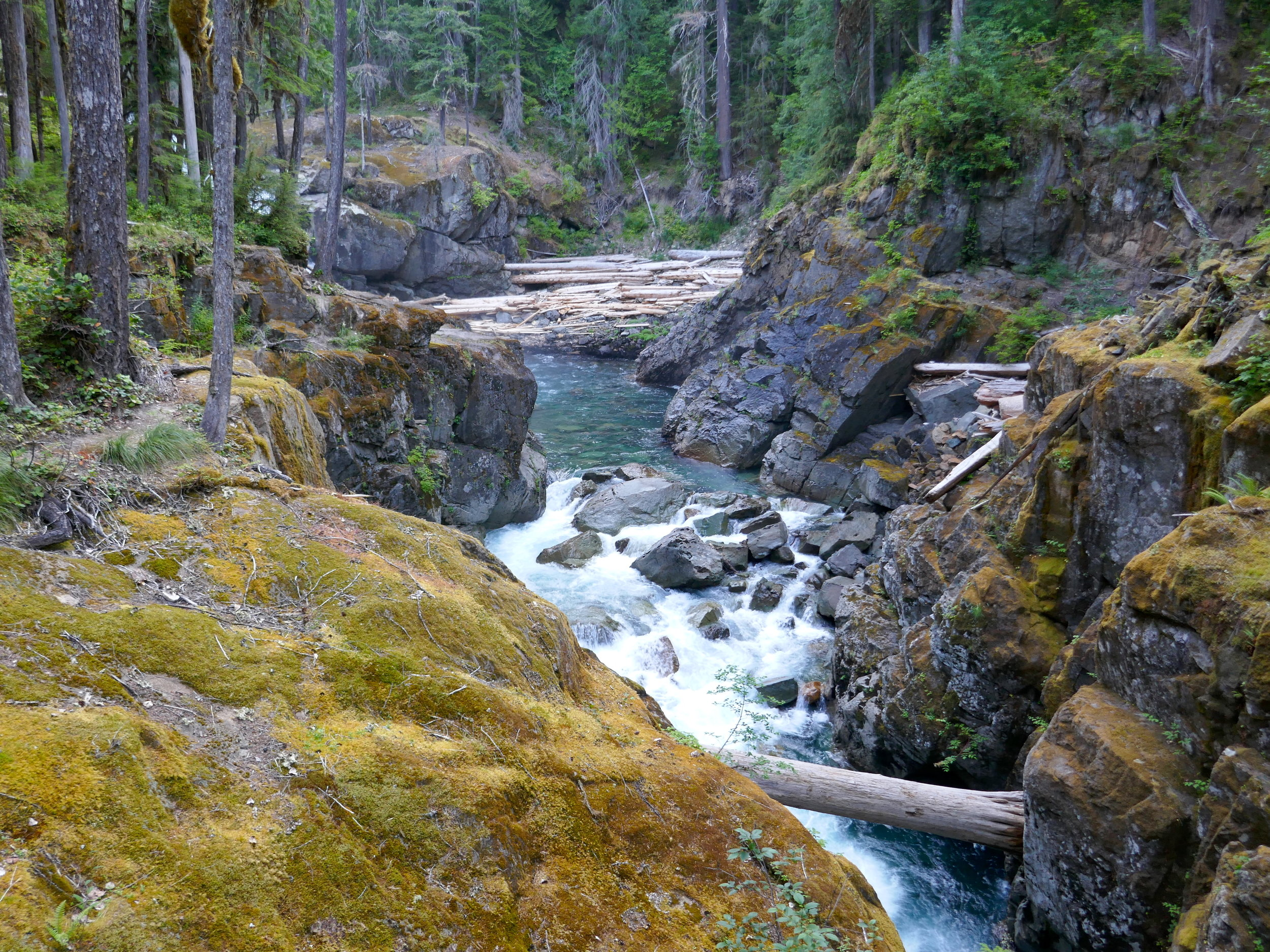Silver Falls trail, part of the East Eastern Loop