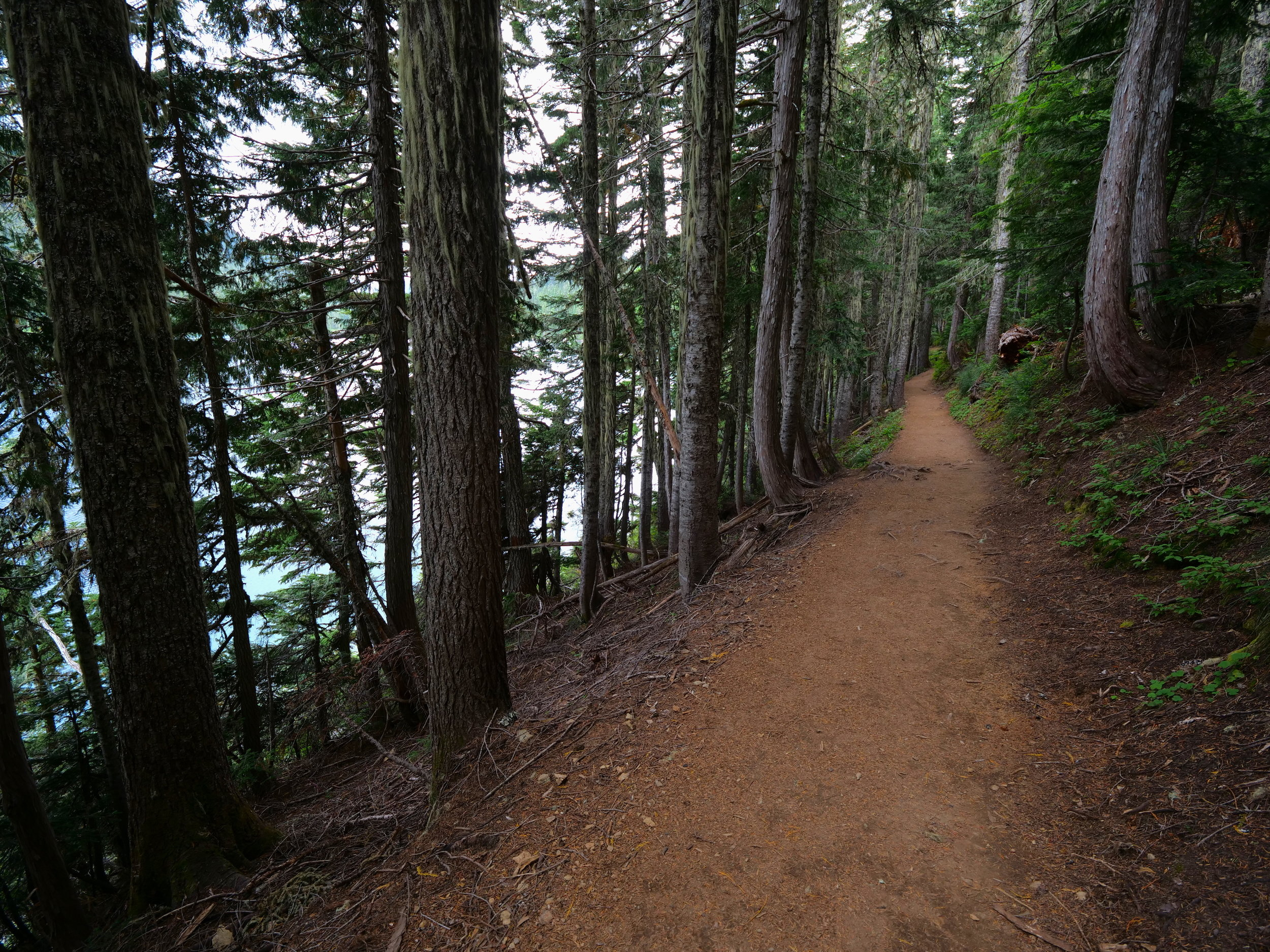 Wonderland Trail next to Mowich Lake