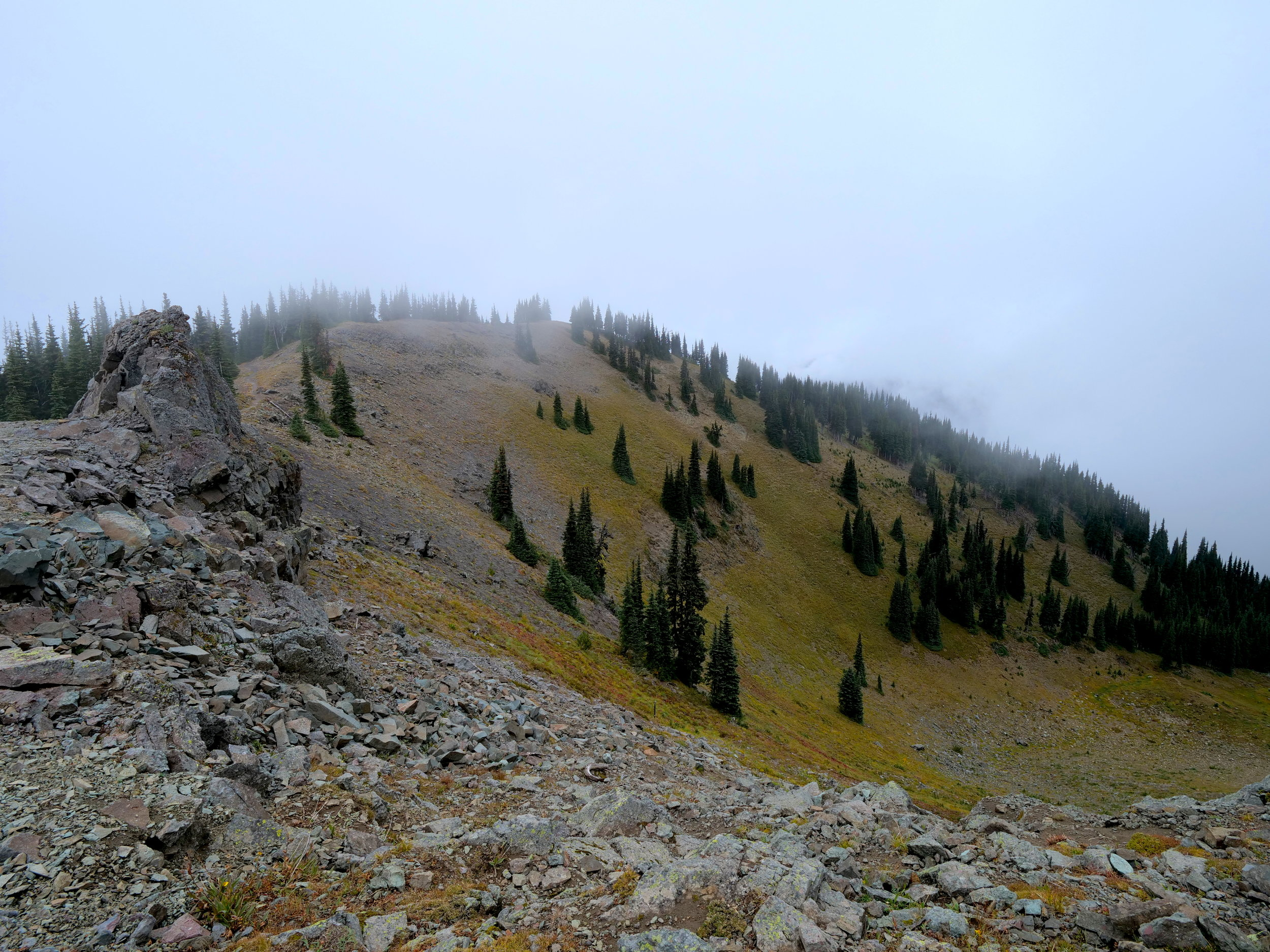 Crystal Mountain Trail before dropping to Sand Flats