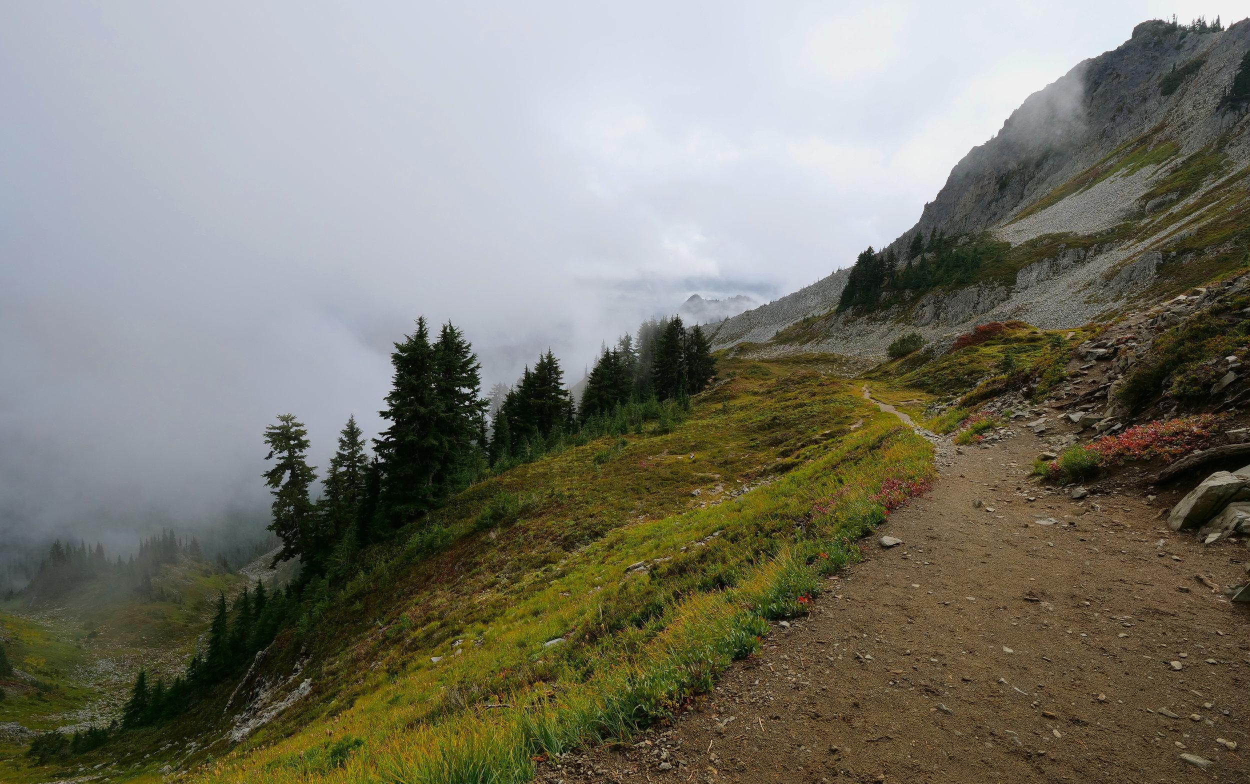 Pinnacle Peak trail saddle (looking south)