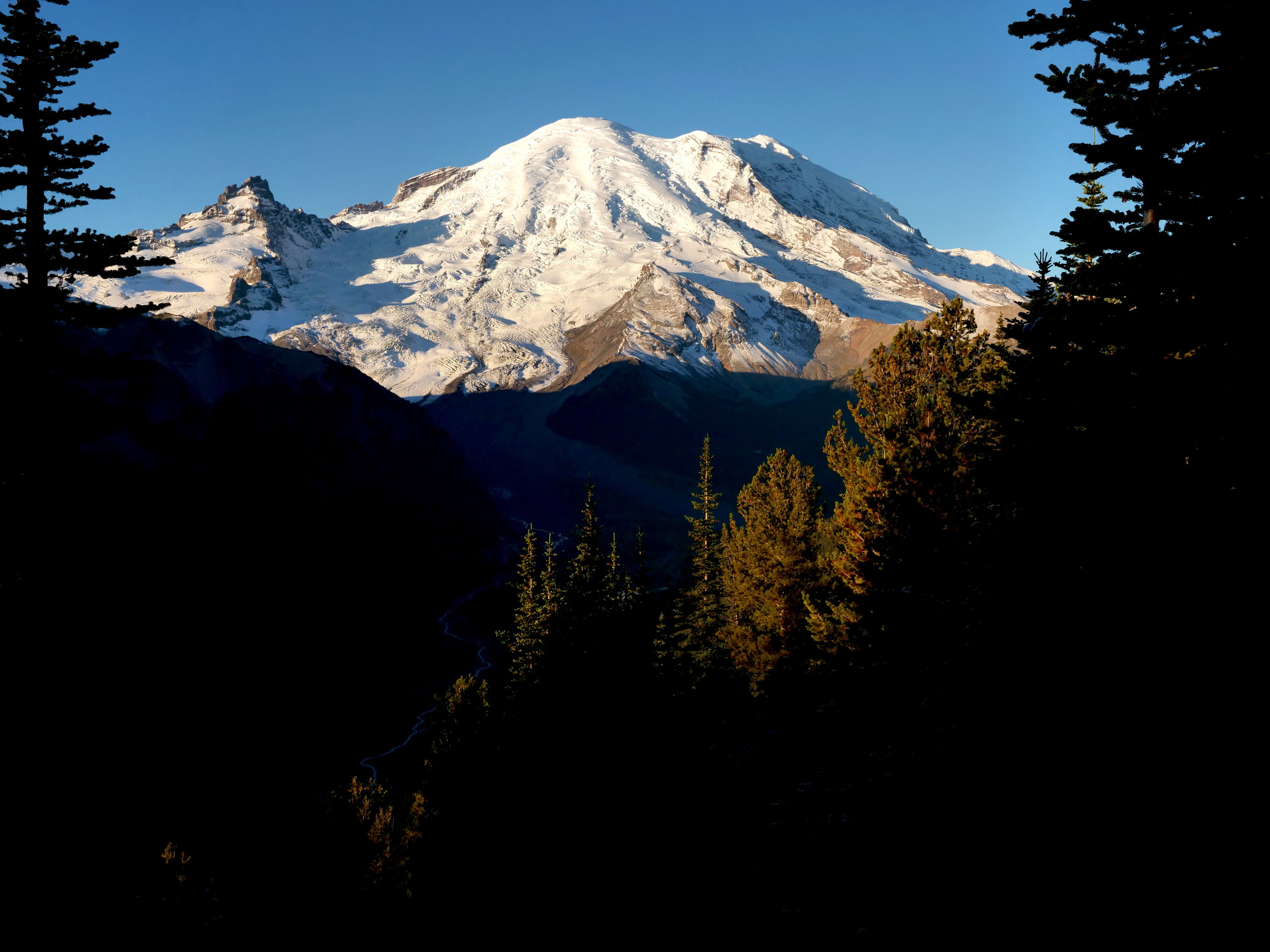 Mt. Rainier from the Silver Forest Trail, Sunrise