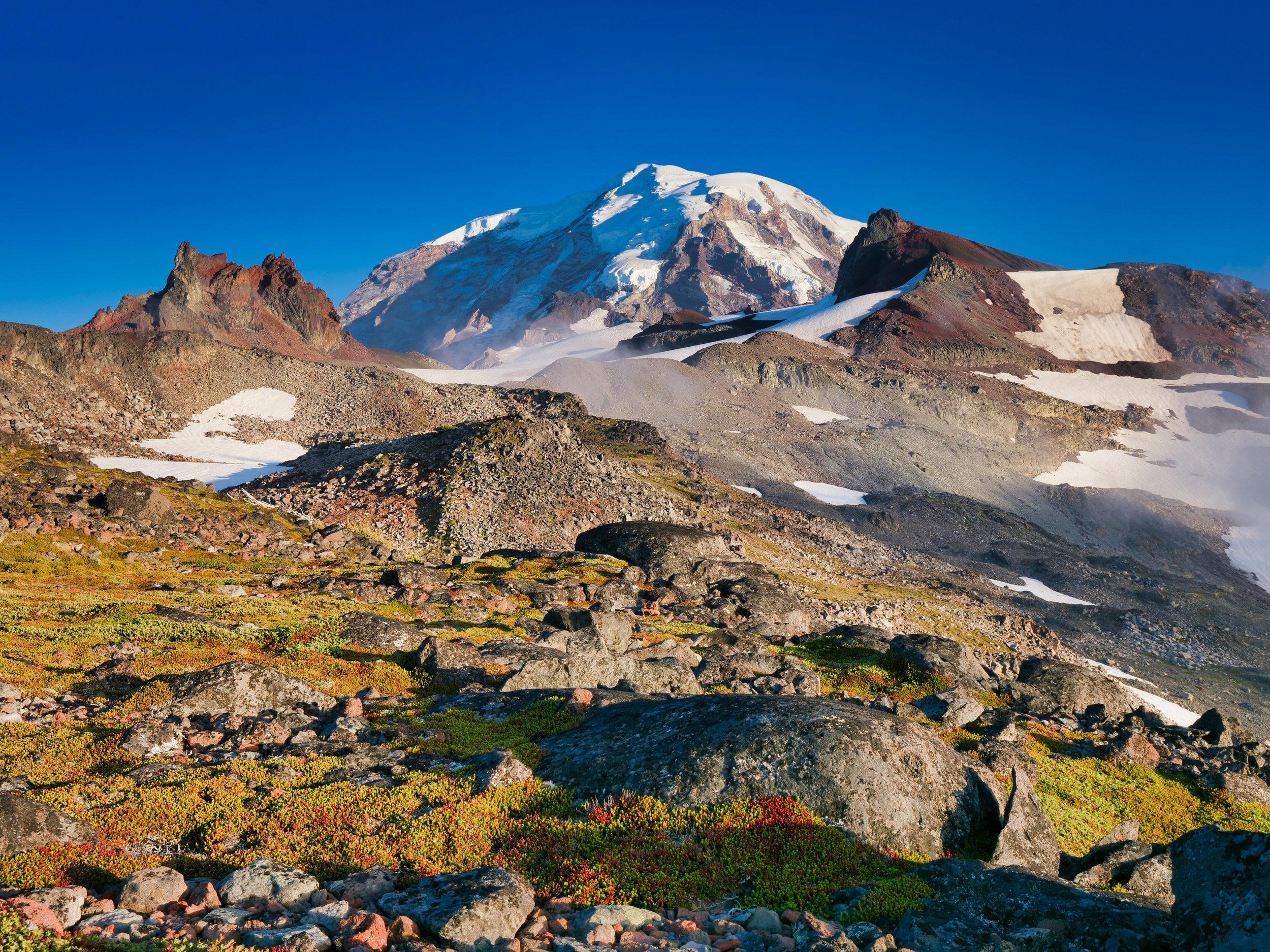 Image taken with Panasonic G9 with Leica 8-18 lens (Ptarmigan Ridge, Mt. Rainier)