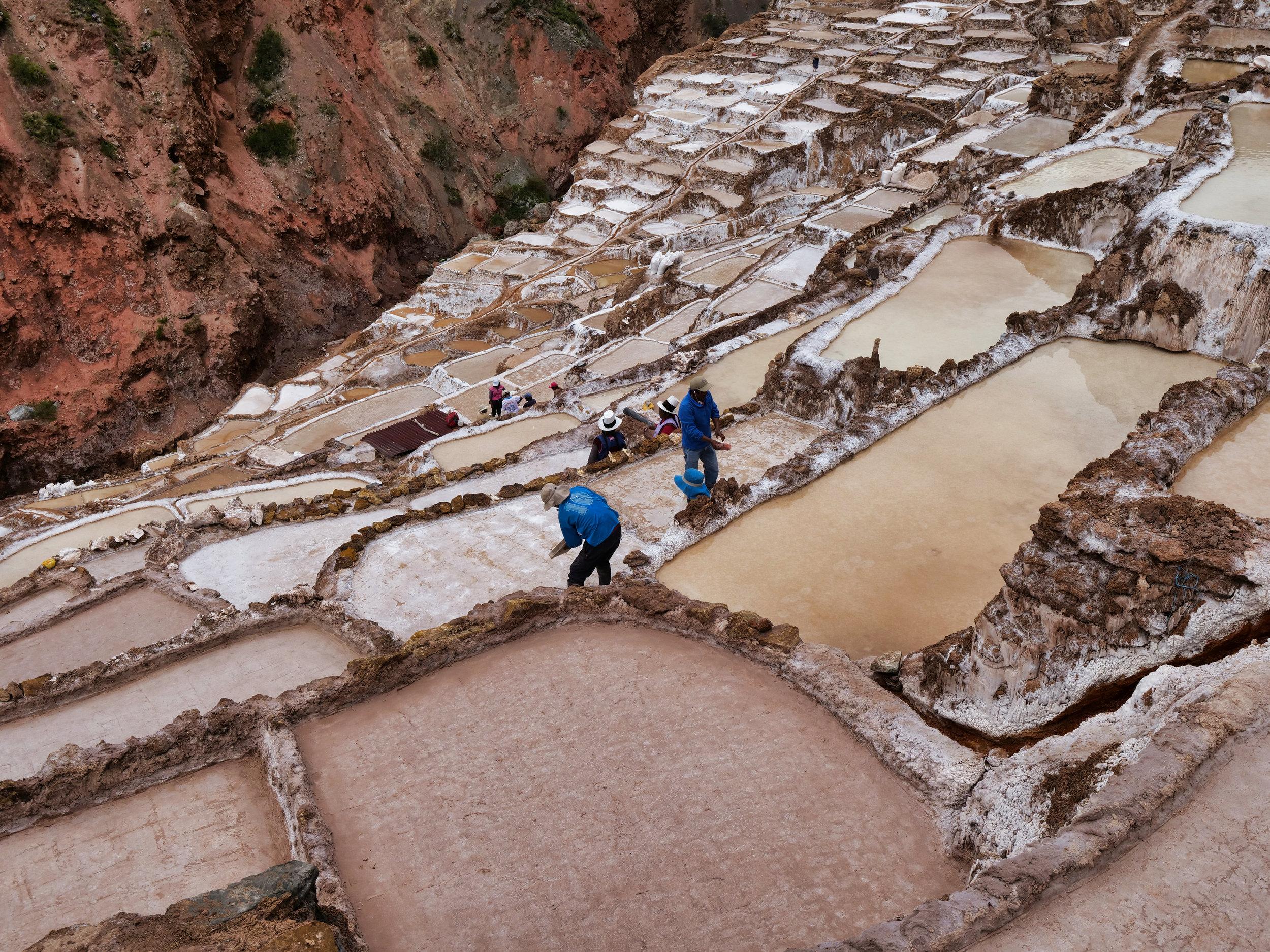 Locals at work tending to the Maras Salt Ponds, Peru