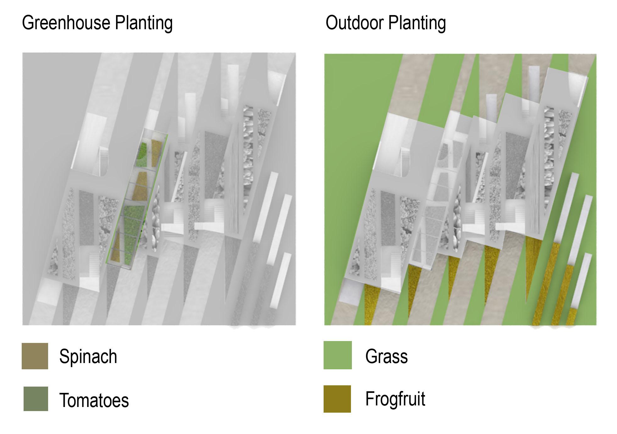 planting diagram-2