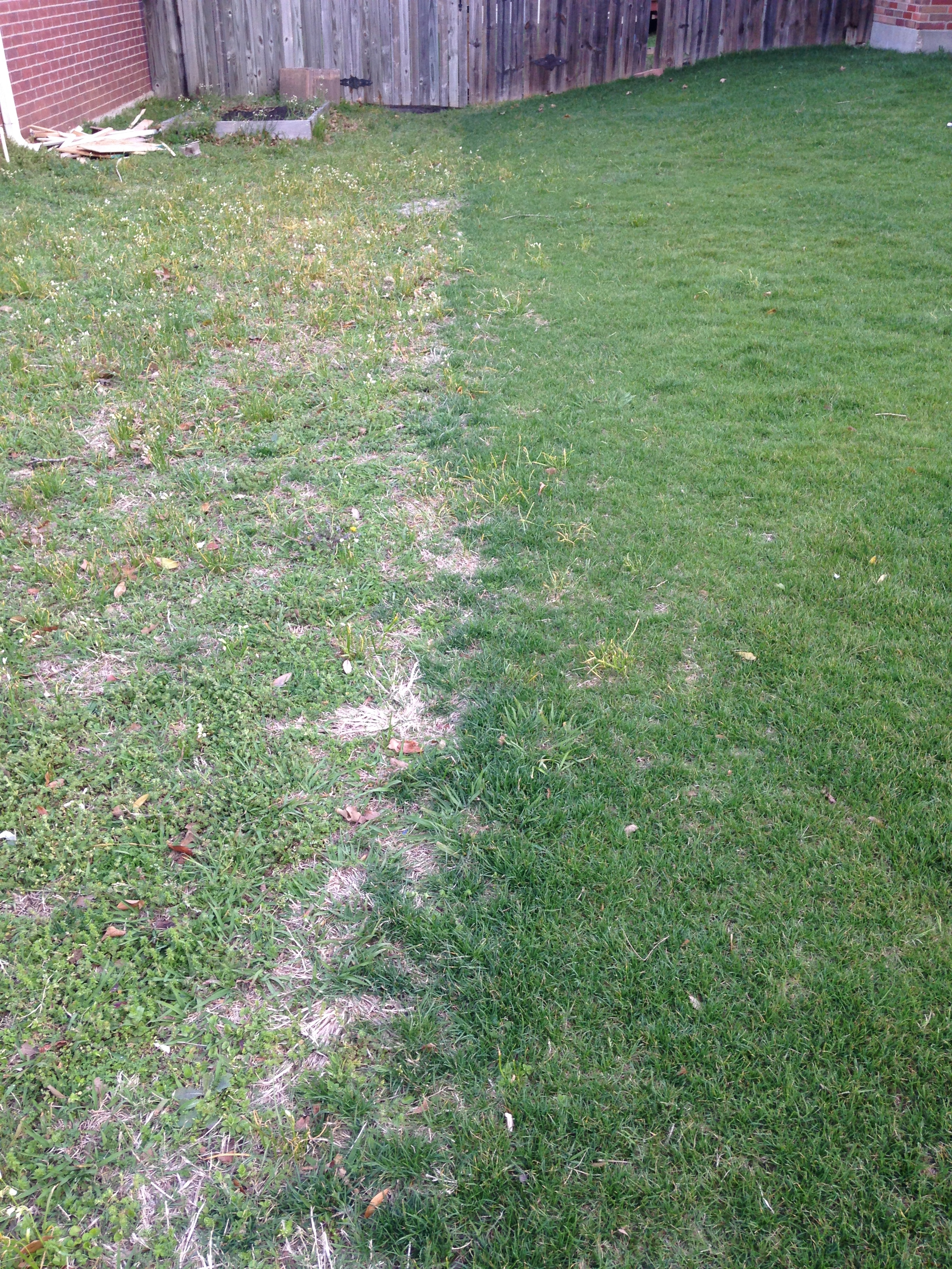 The grass can be greener on your side with the help of Fertilogic!!