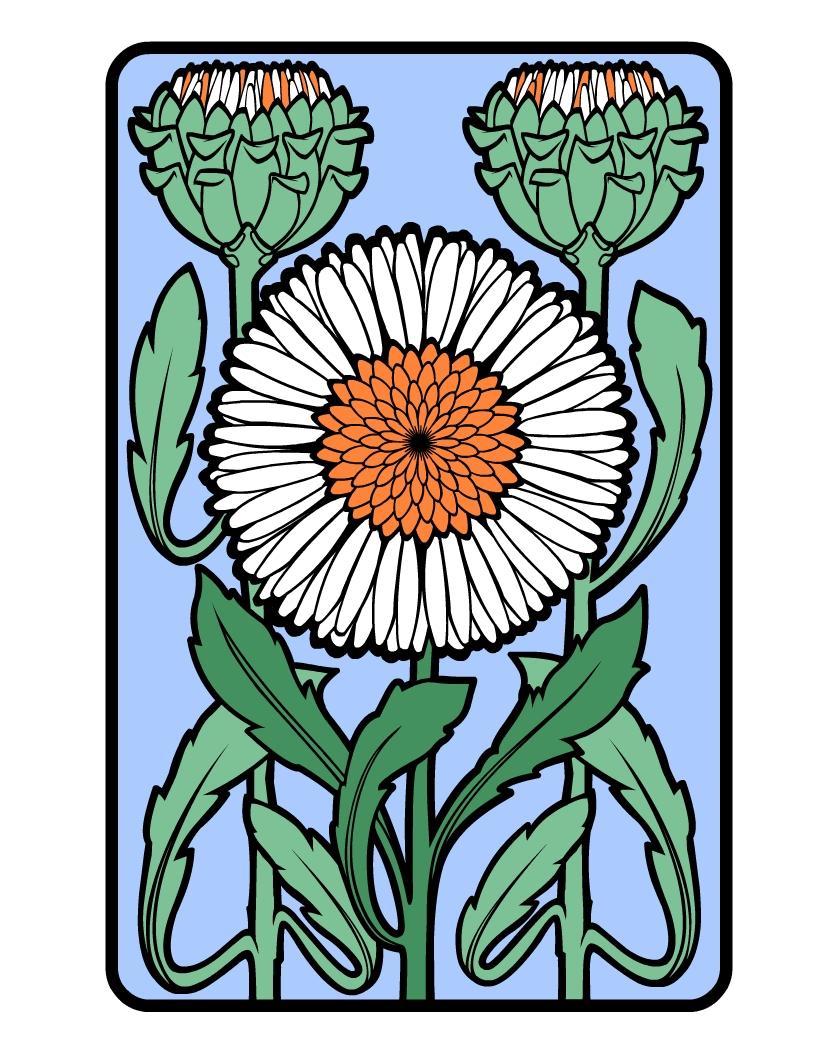 Flower Colour.jpg
