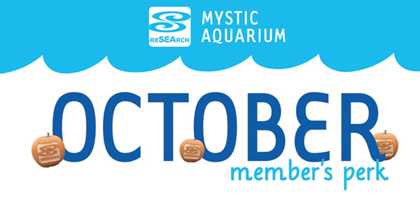 Member's Perks_October.jpg