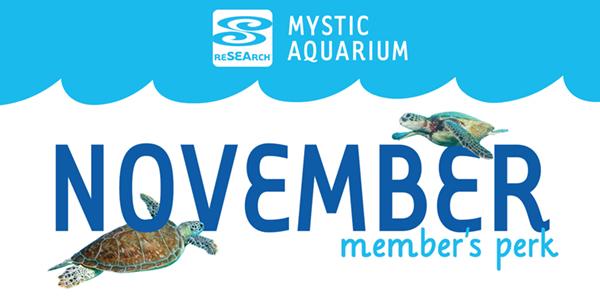 MembersPerks_November.jpg