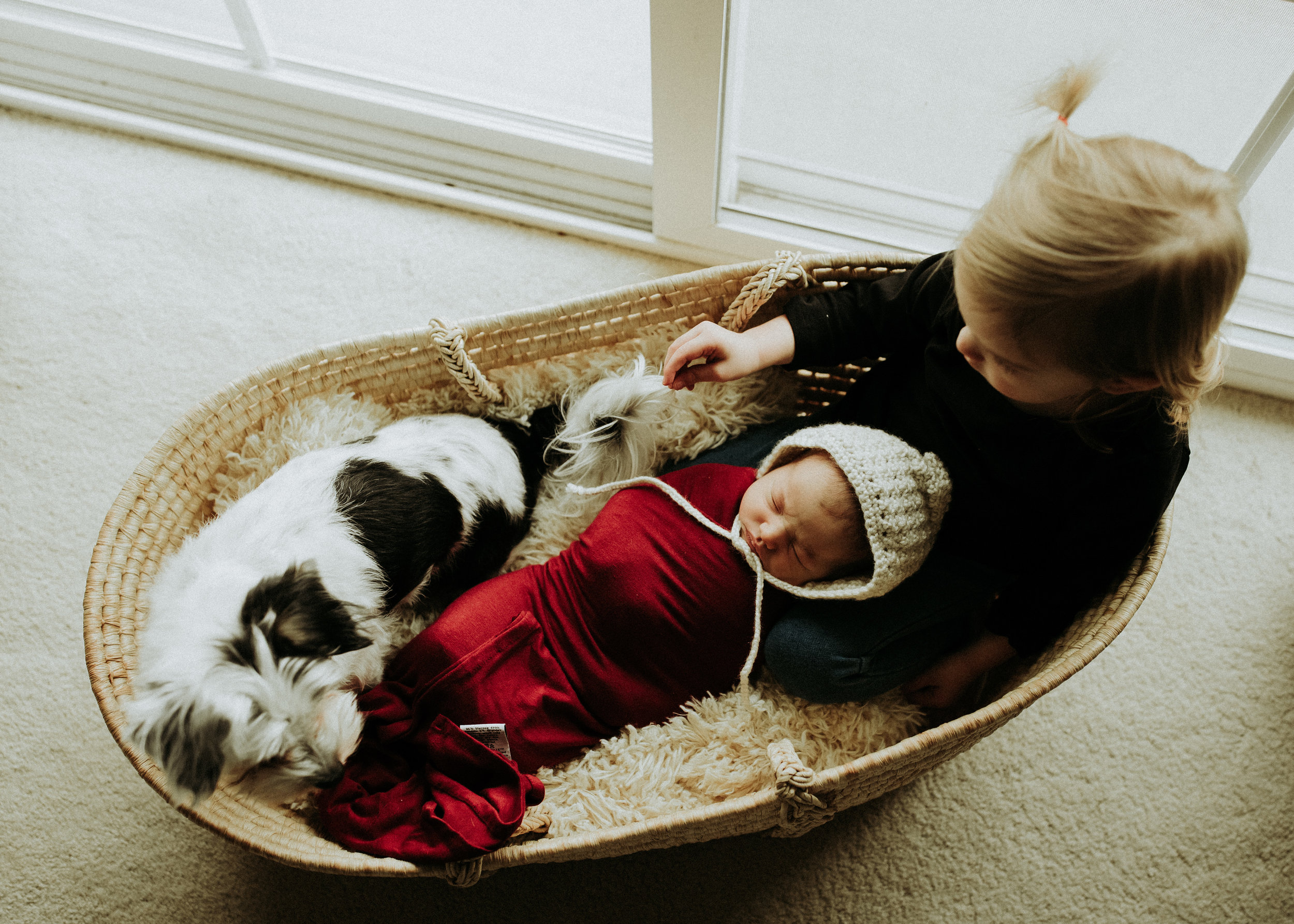 Newborn-Photographer-Bellingham-WA-Brianne-Bell-Photograpy-(Ila)-103.jpg