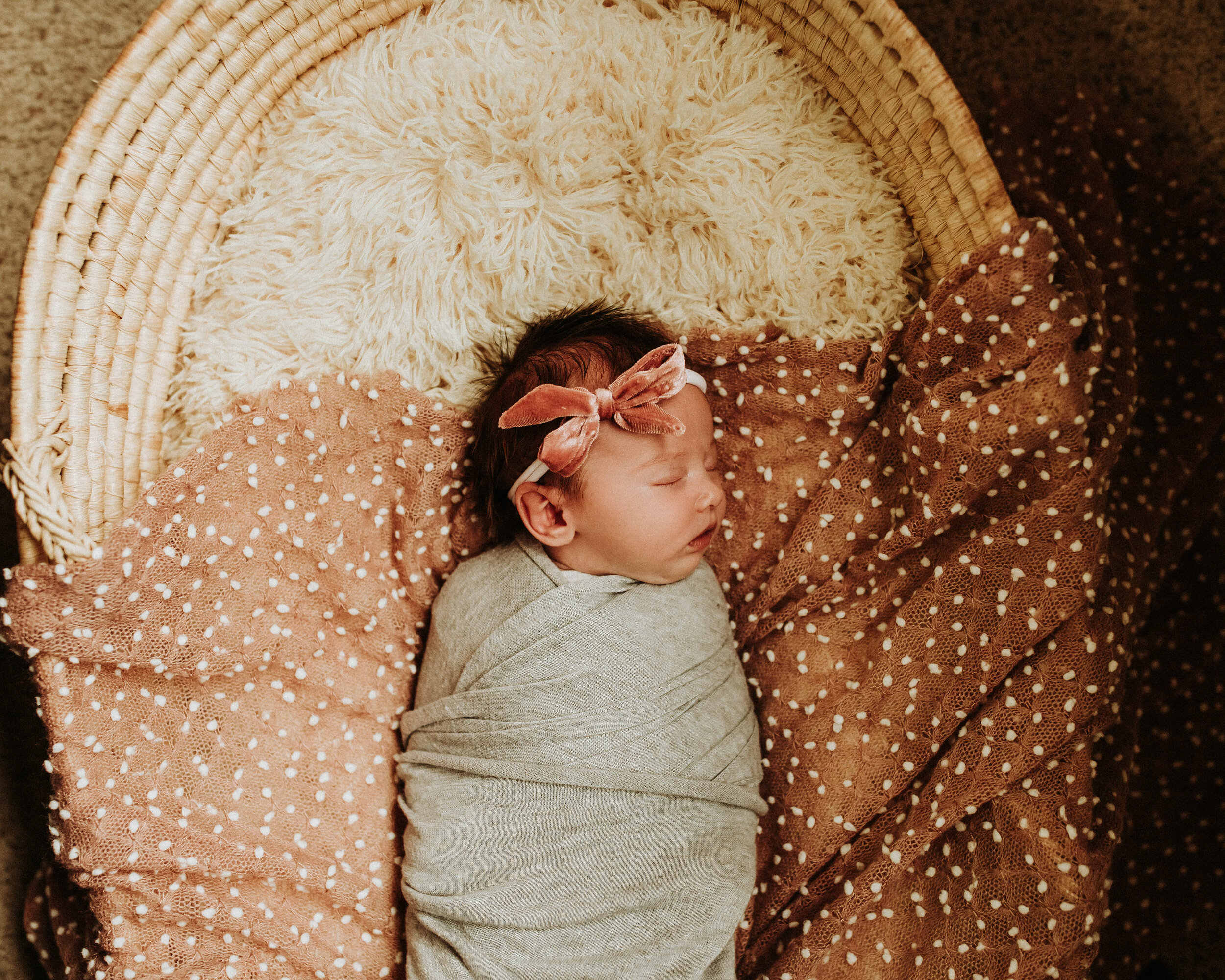 Newborn-Photographer-Bellingham-Wa-Brianne-Bell-Photography-(Dottie)-31.jpg
