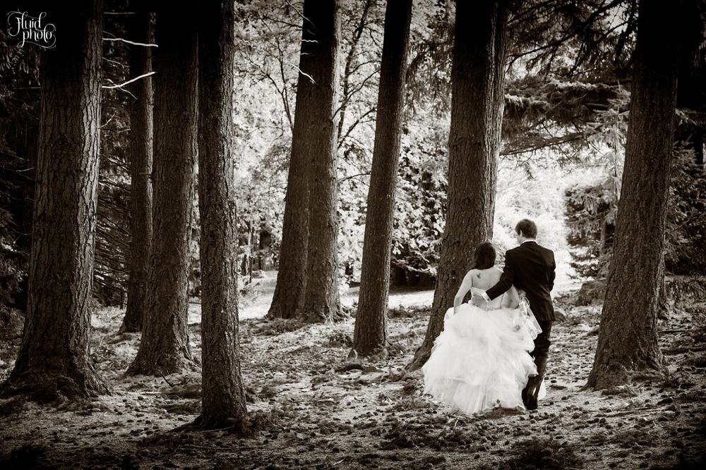 queenstown-forest-wedding-30