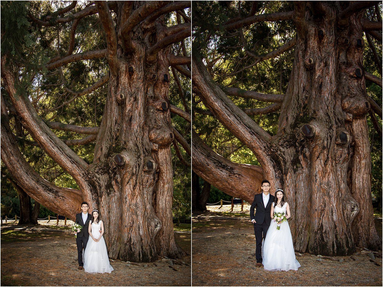 pre-wedding-photography-queenstown-33.jpg
