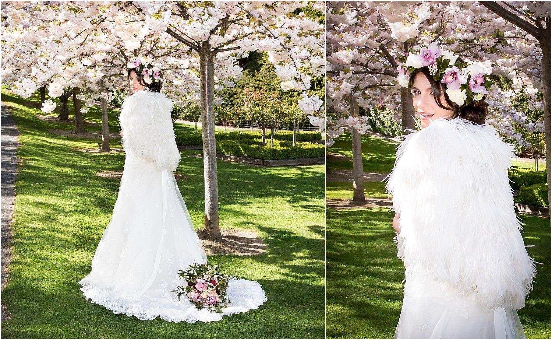 spring-blossom-wanaka-11.jpg
