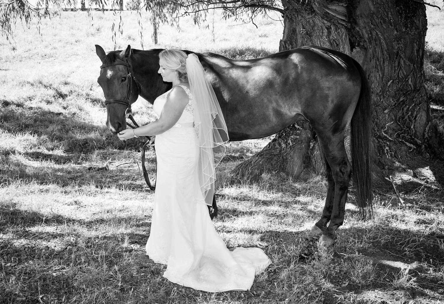 black and white photo of bride with horse