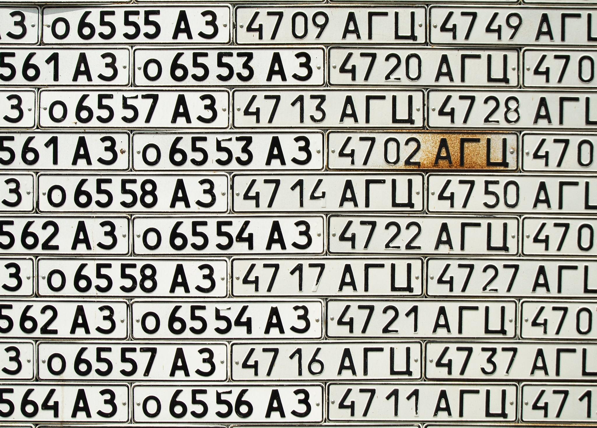 number-plate-wall-vank.jpeg