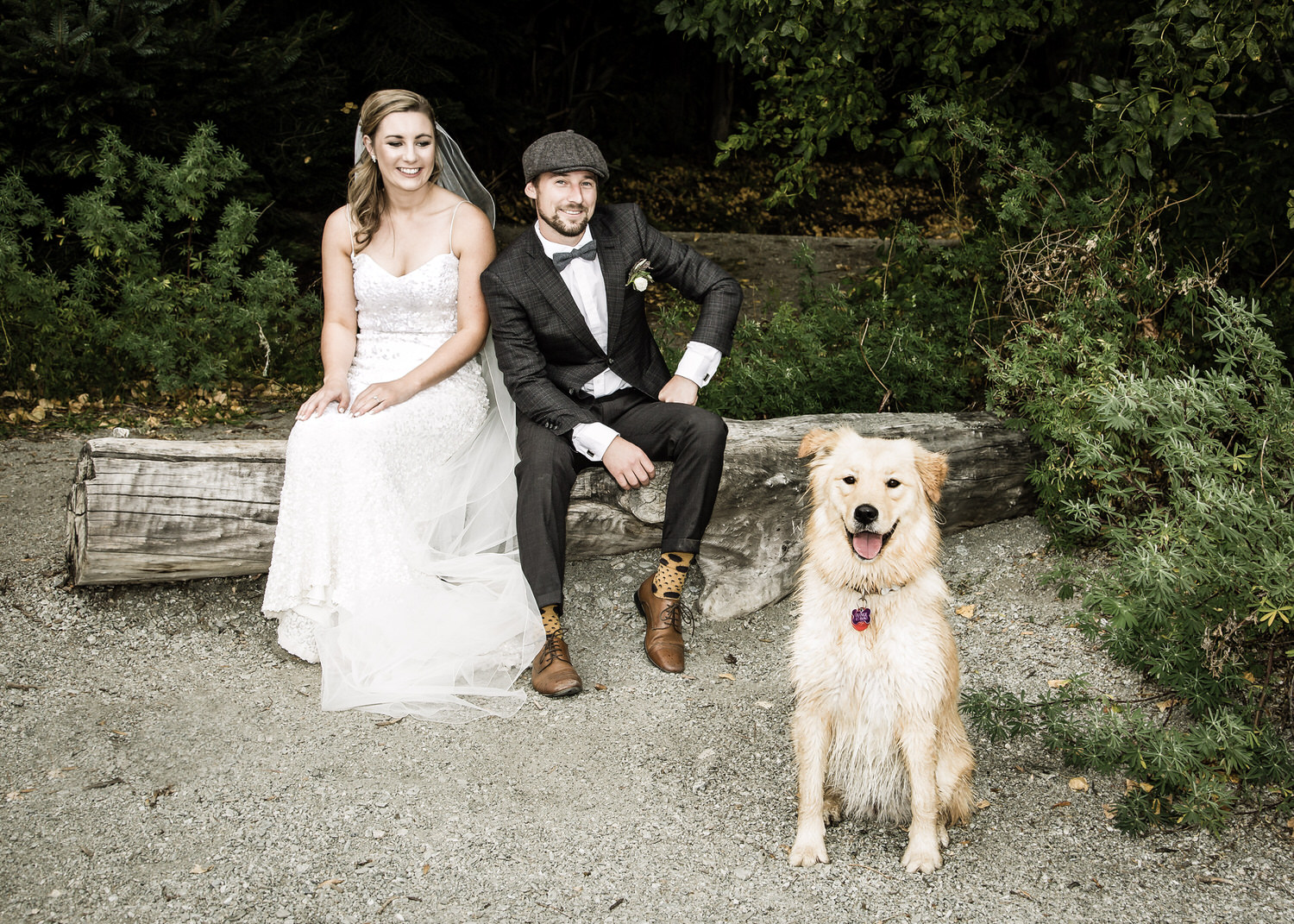 bride-groom-furbaby.jpg