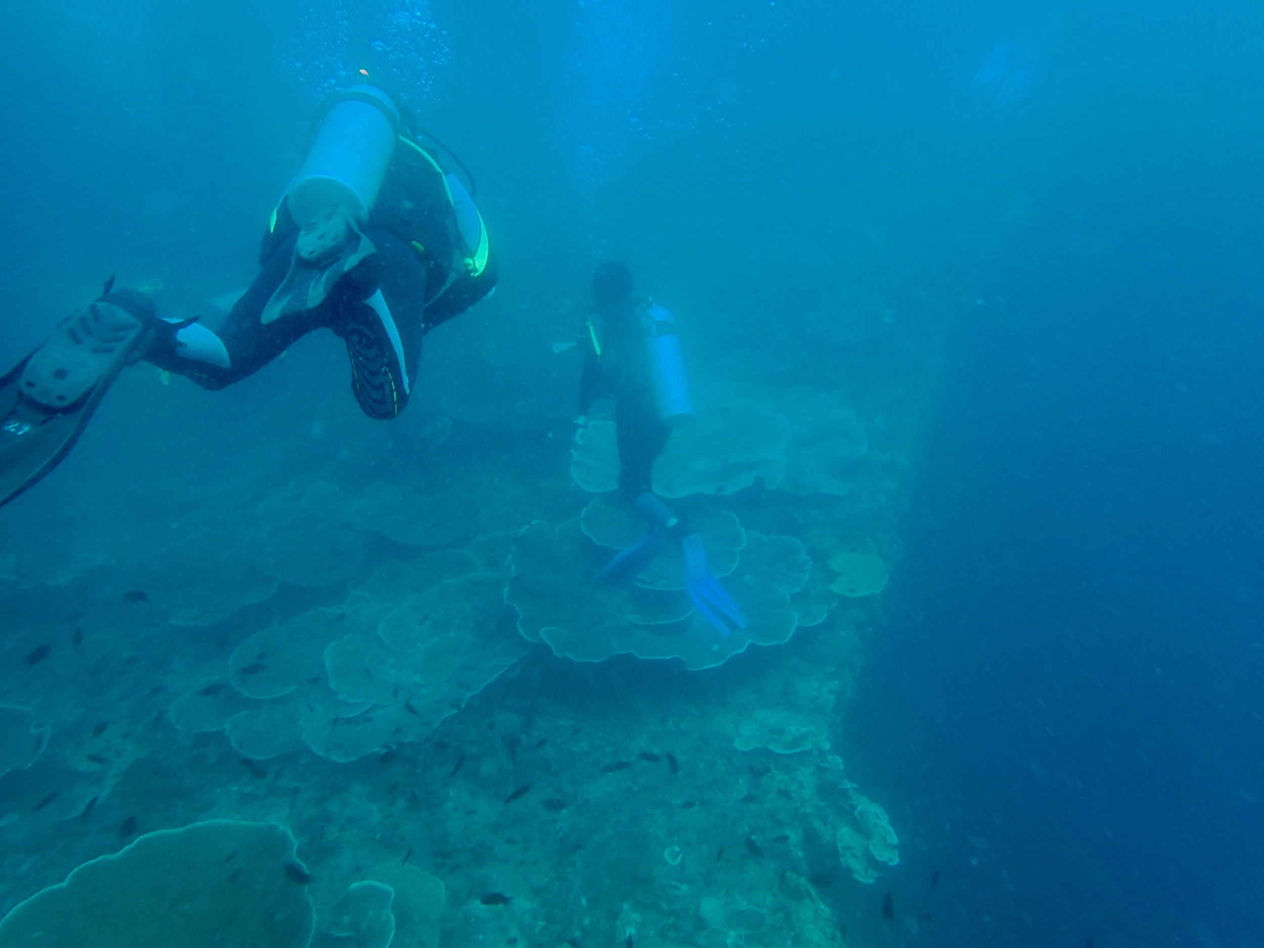 The deck of a very large wreck