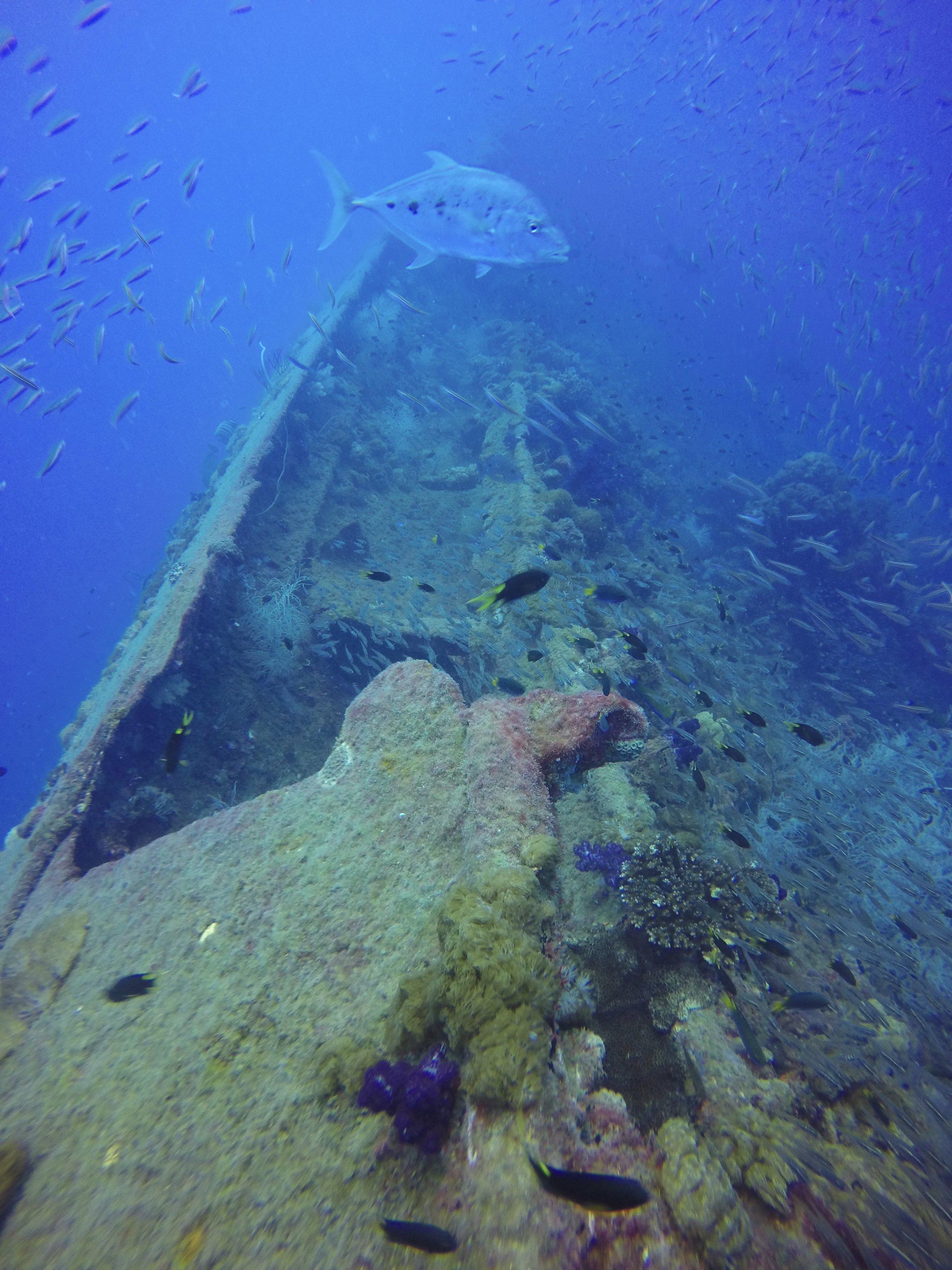 SS Yongala wreck