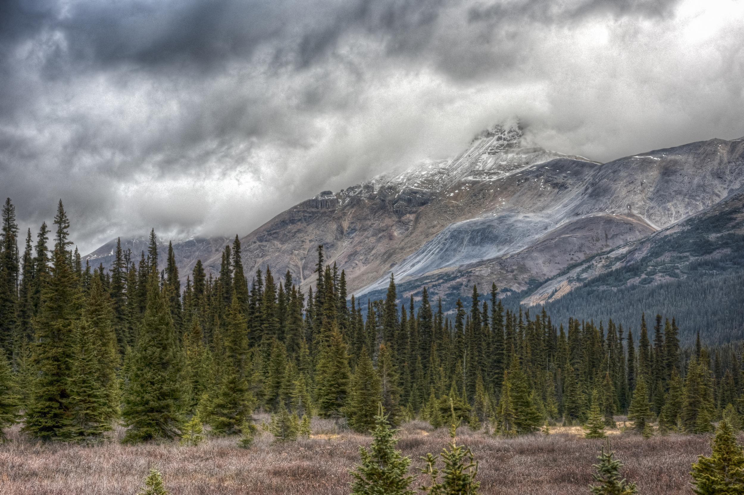 The Rockies, Alberta