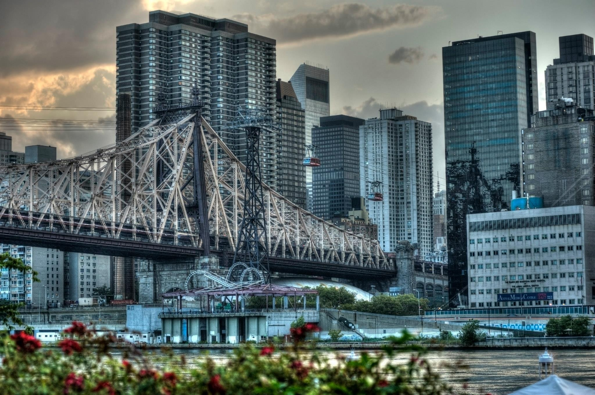 The Queensboro Bridge from Roosevelt Island File 2013-02-27 20.09.09 - Scott B. picked 7/27Took a walk over to Roosevelt Island in 2013, I believe. I've edited this same shot on the computer and then again on the phone. This version has had so many edits that it looks more like a graphic novel than a photo. (L&F Filename 2013-02-27 20.09.09)