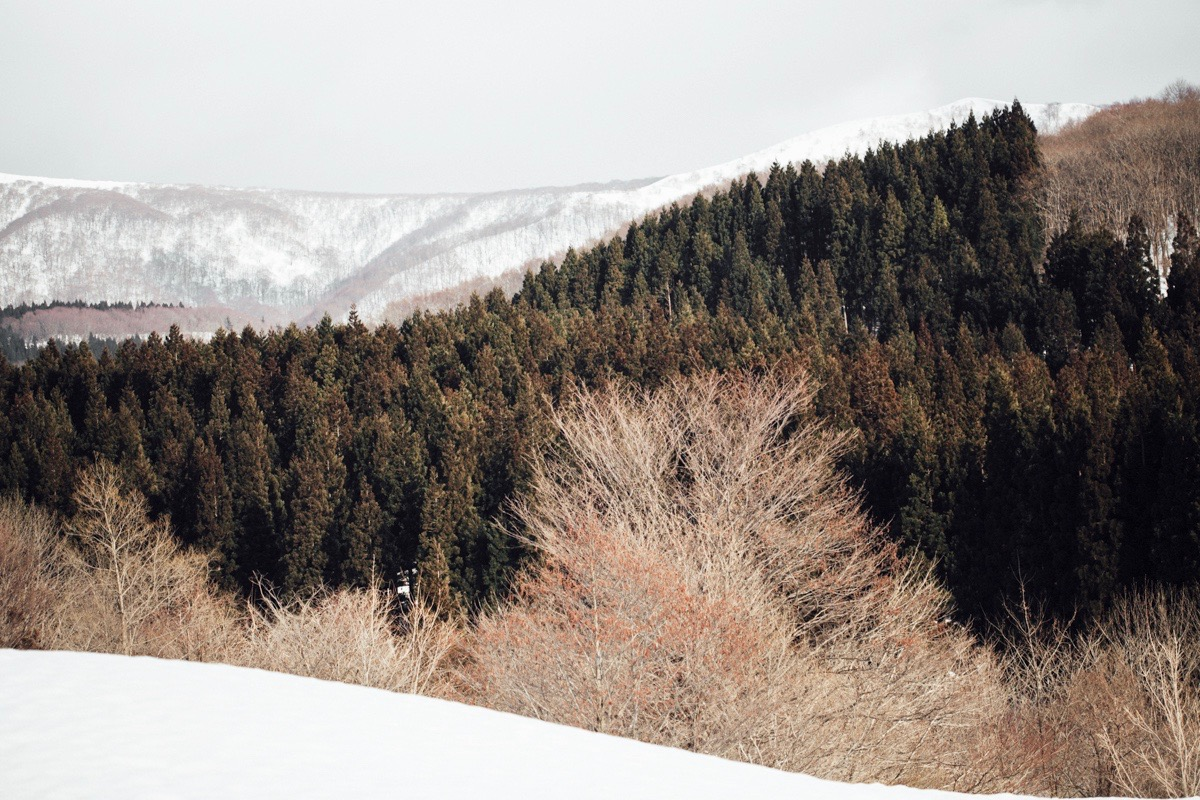 magnolia_mountain_snow_country_akita.jpg