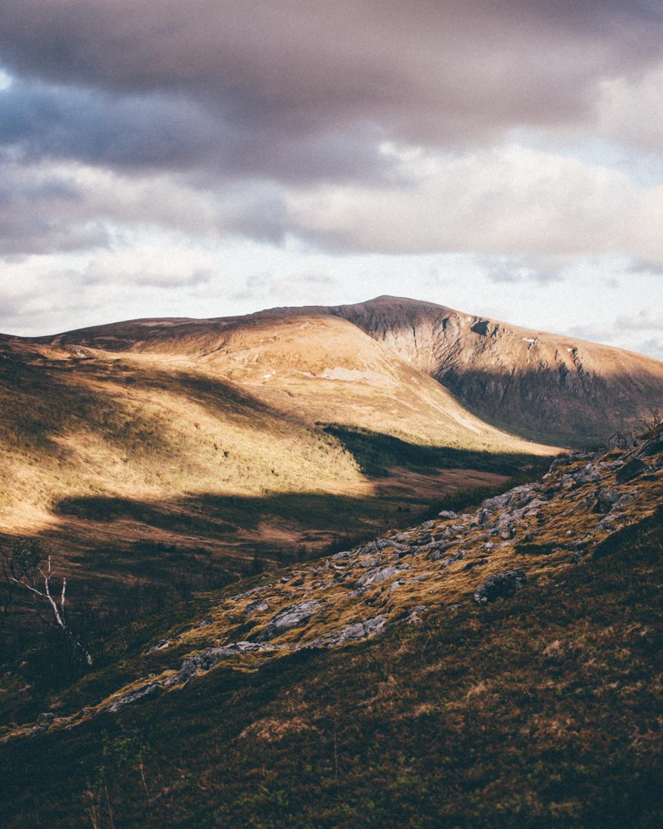 Magnolia_mountain_nordland_matinden_hike_III.jpg