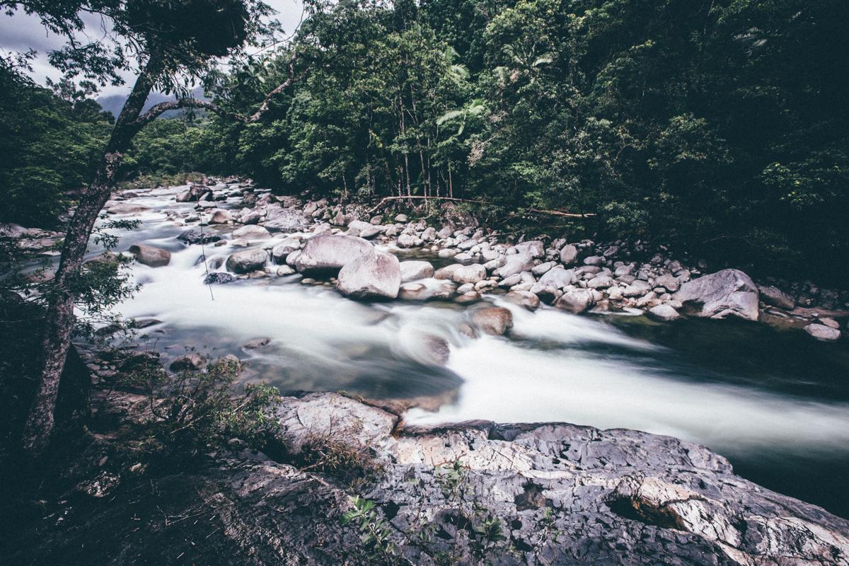 Magnolia_Mountain_Mossman_Gorge.jpg
