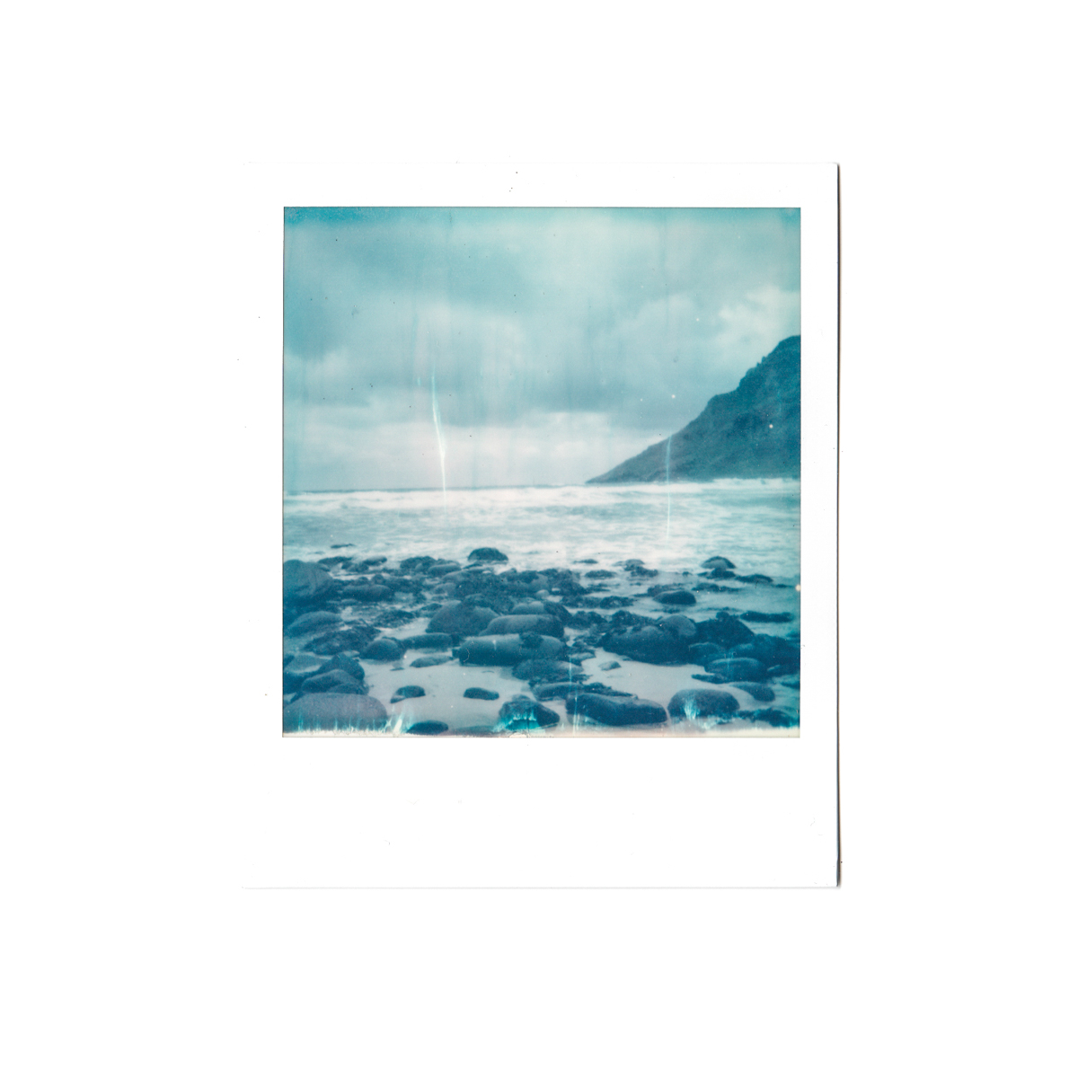 Magnolia_mountain_solvor_MT34-2.jpg