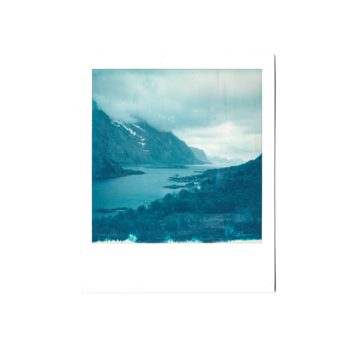 Magnolia_mountain_solvor_MT34-14.jpg