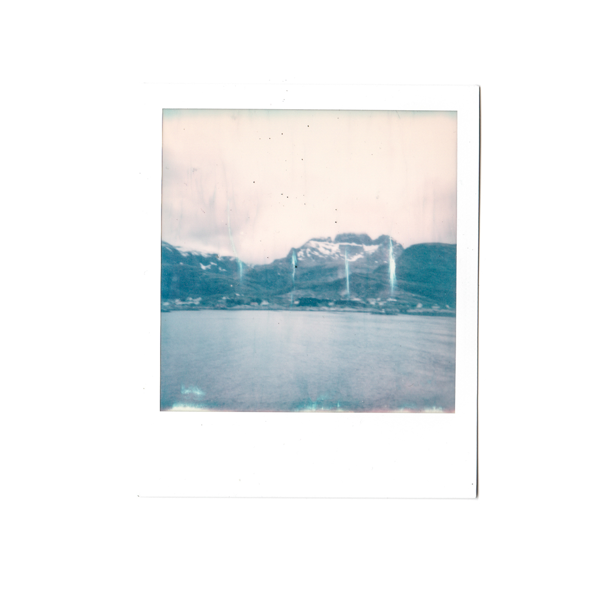 Magnolia_mountain_solvor_MT34-16.jpg