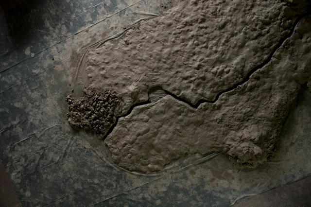 Satellitenbild_1.jpeg
