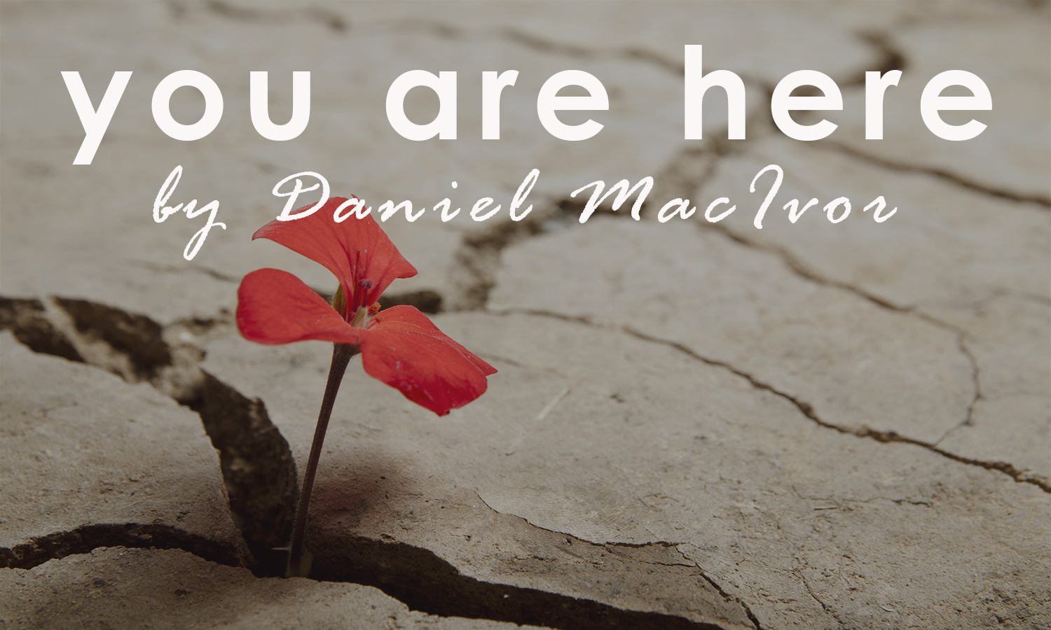 You Are Here Mockup.png