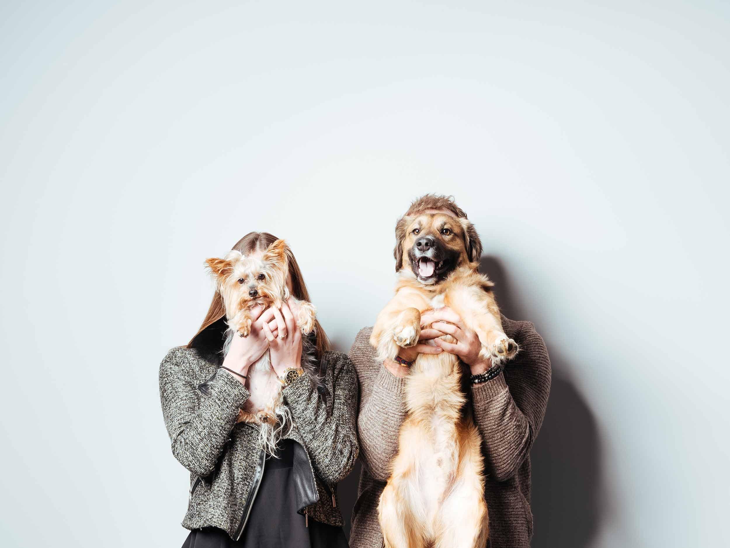 12.01---Dogs-Life_0025_9825.jpg