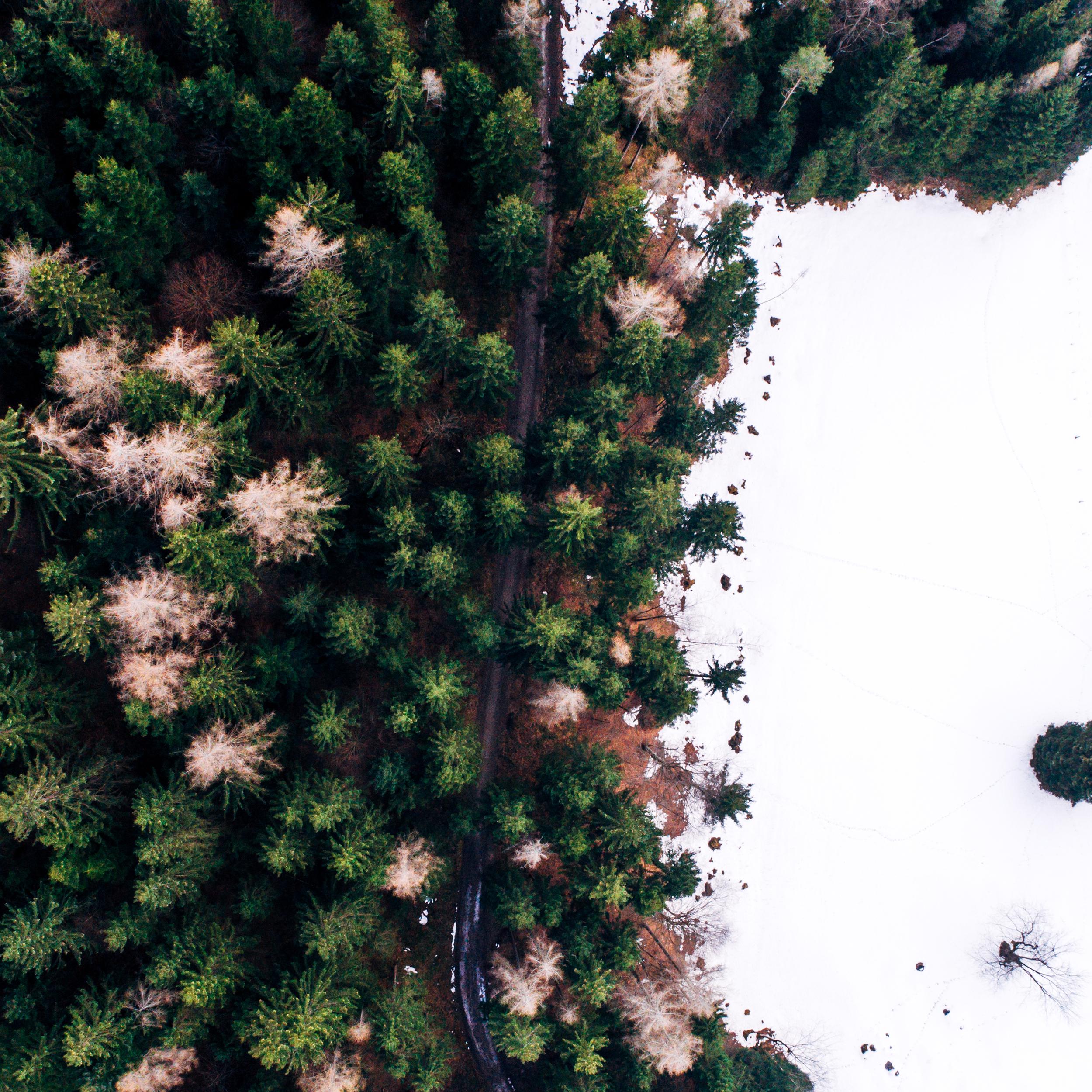 Aerial_Vision_0002_0046-3.jpg