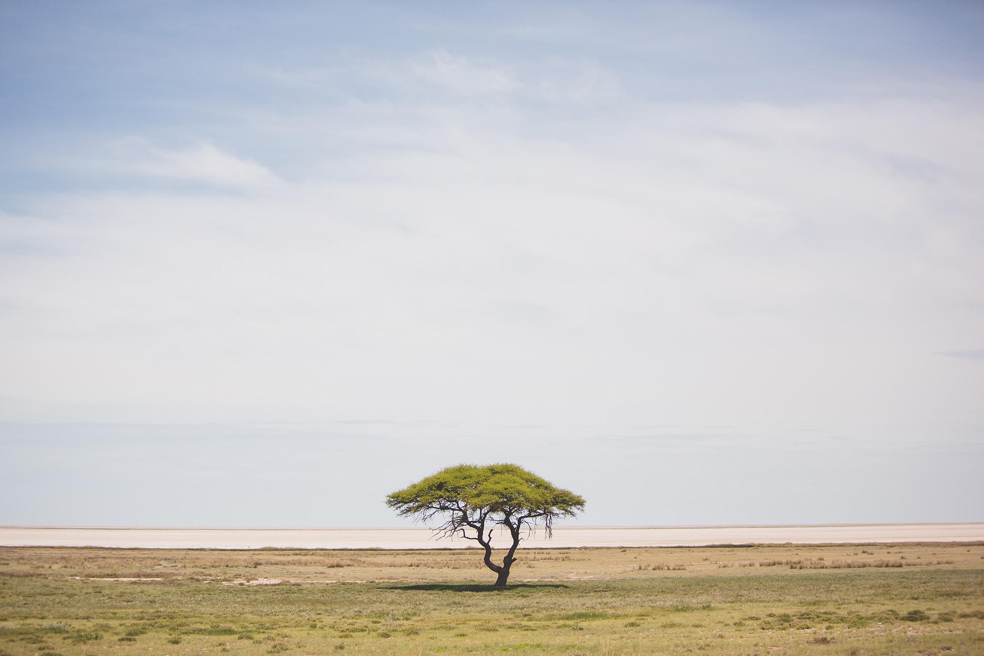 0006_Namibia_13061.jpg