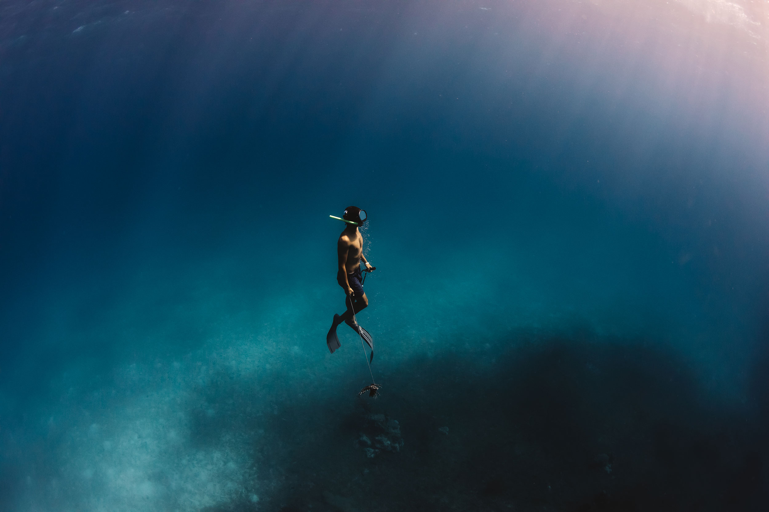 Travel_StudioM_Bahamas-36.jpg
