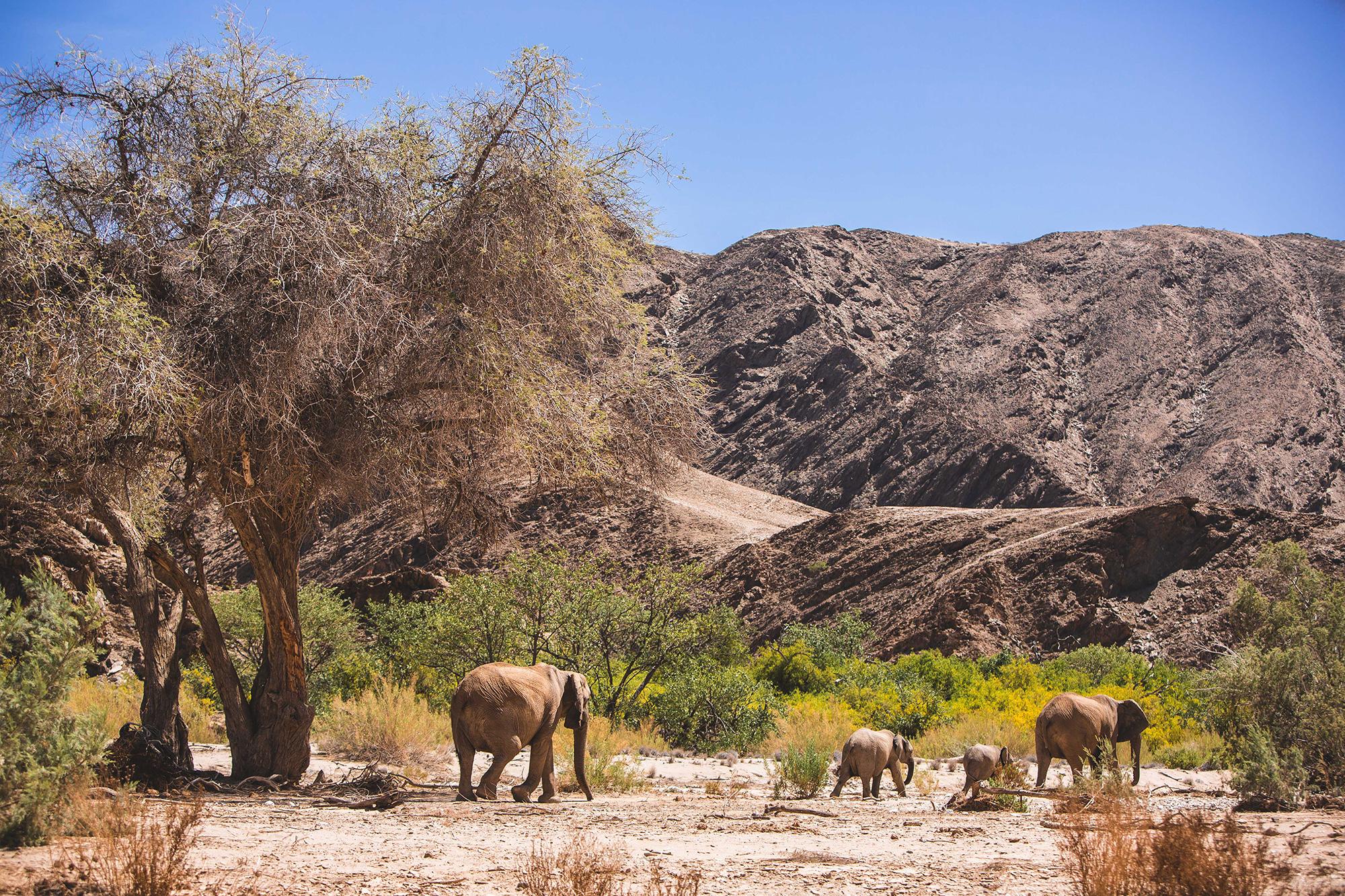 0021_Namibia_3770.jpg