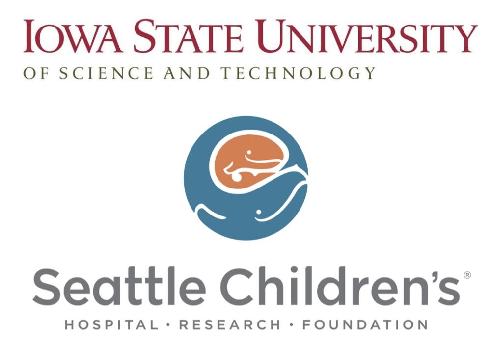 2017 REACH research grant winners