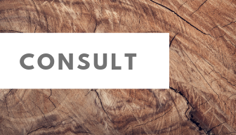 Consult (5).png