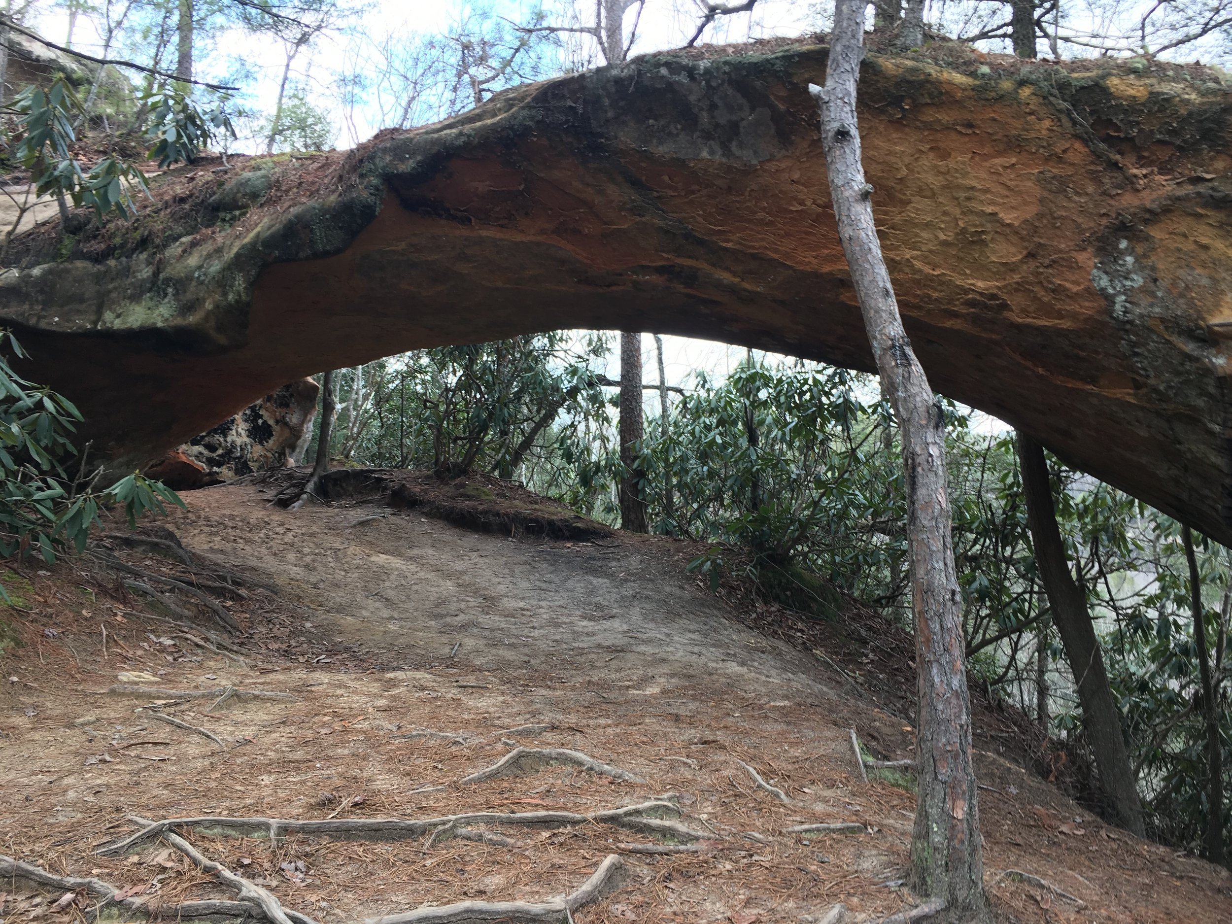 Indian Arch.