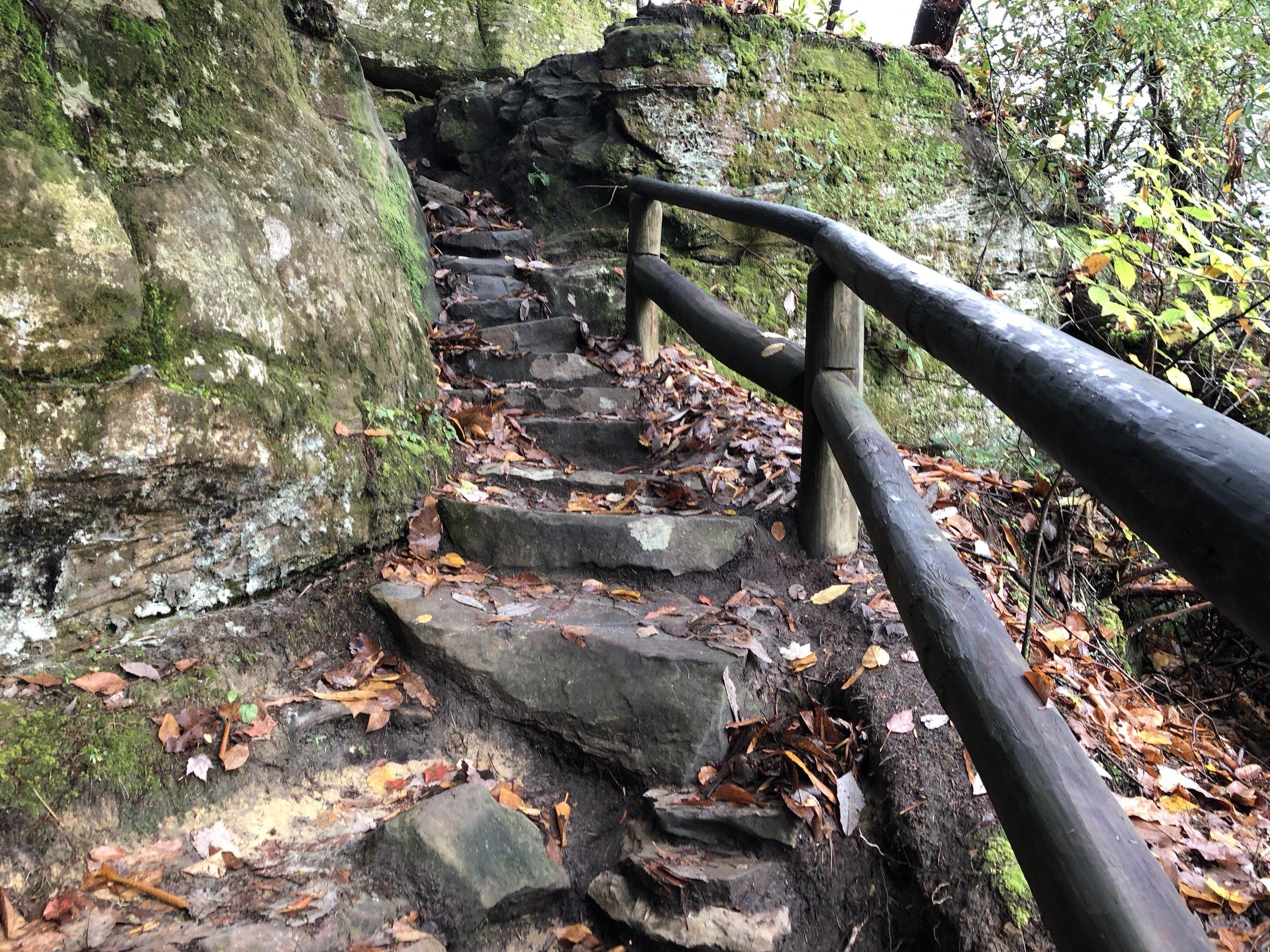 Steep trails ascending into Natural Bridge State Park.