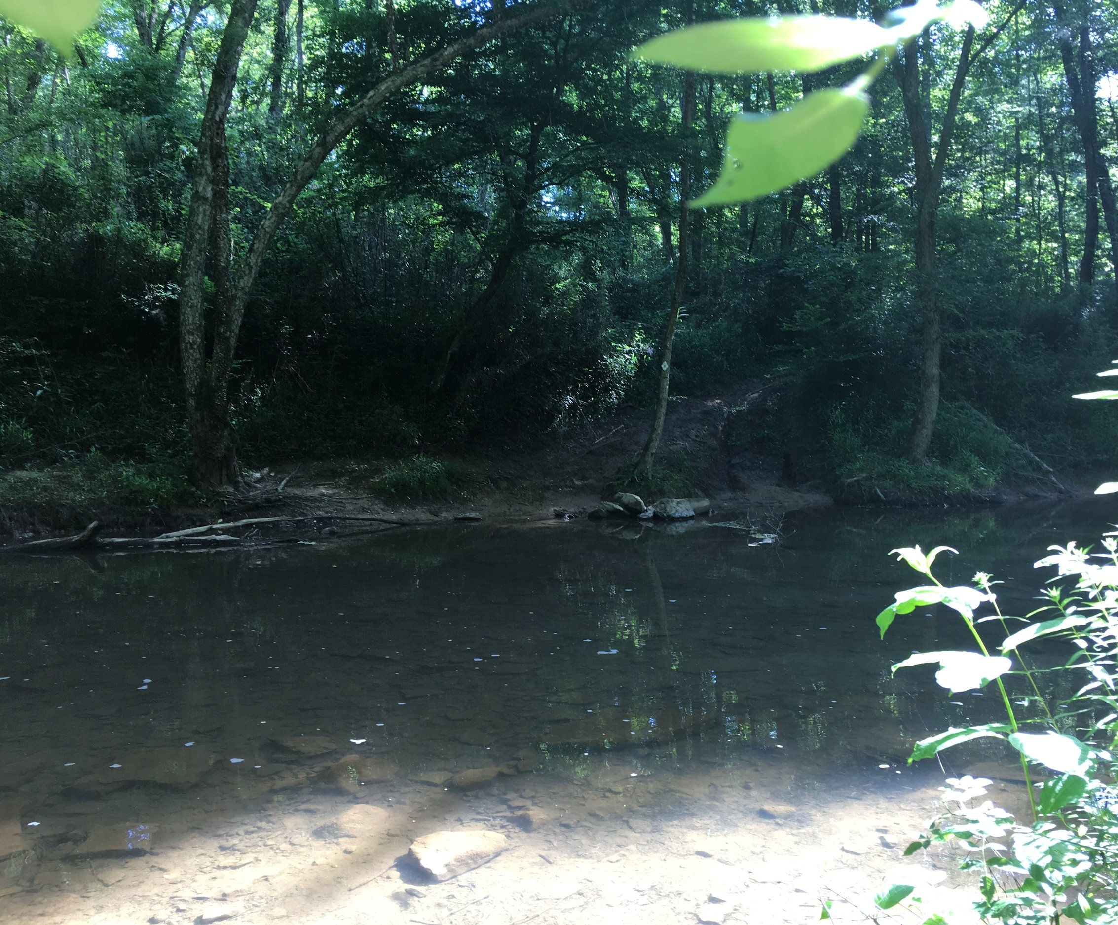 The crossing of Horse Lick Creek
